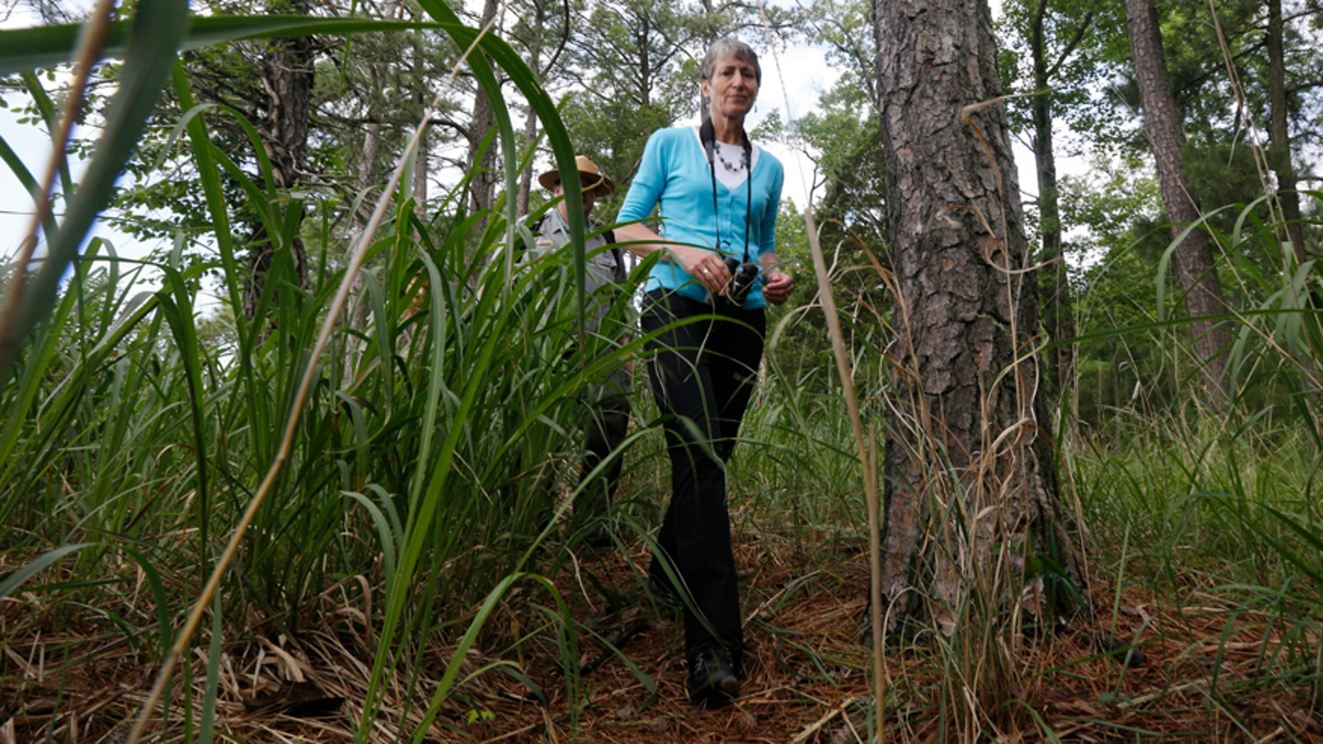 U.S. Interior Secretary Sally Jewell walks through the woods during a tour of Jamestown Island in Jamestown, Va., Thursday, June 5, 2014.