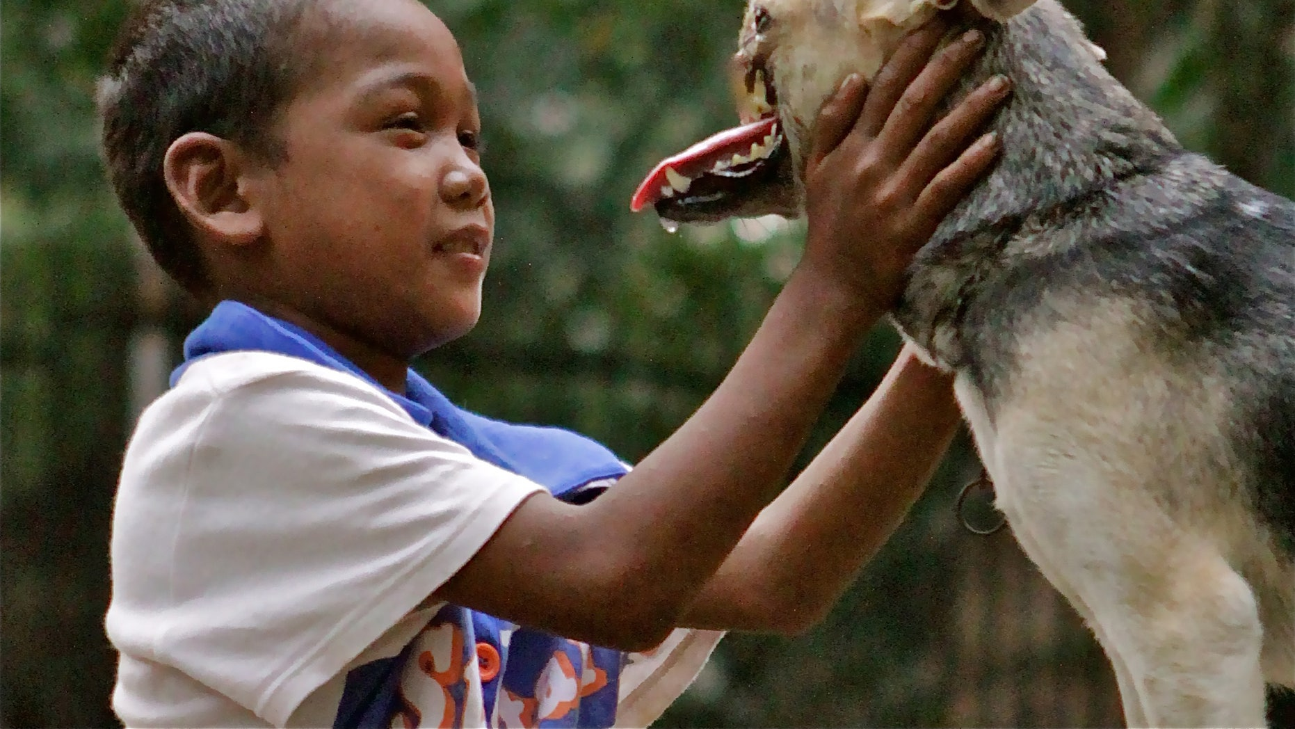 Aug. 12, 2012: In this photo provided by the University of California - Davis, a Bunggal family member plays with Kabang the dog in the Philippines.