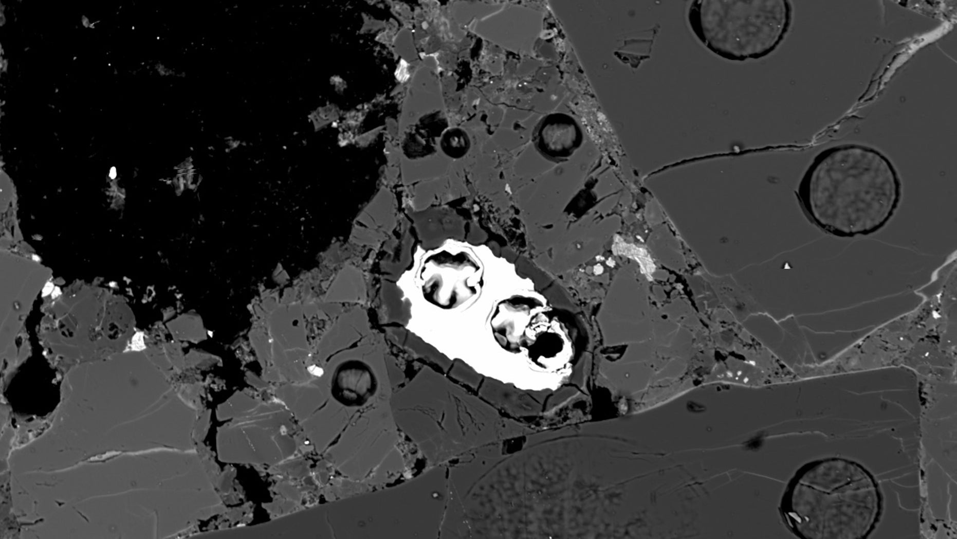 Meteorite EET 83309 contains tiny fragments of opal, a material that requires water to form. In this backscattered electron image, a narrow opal rim surrounds a bright metallic mineral inclusion.