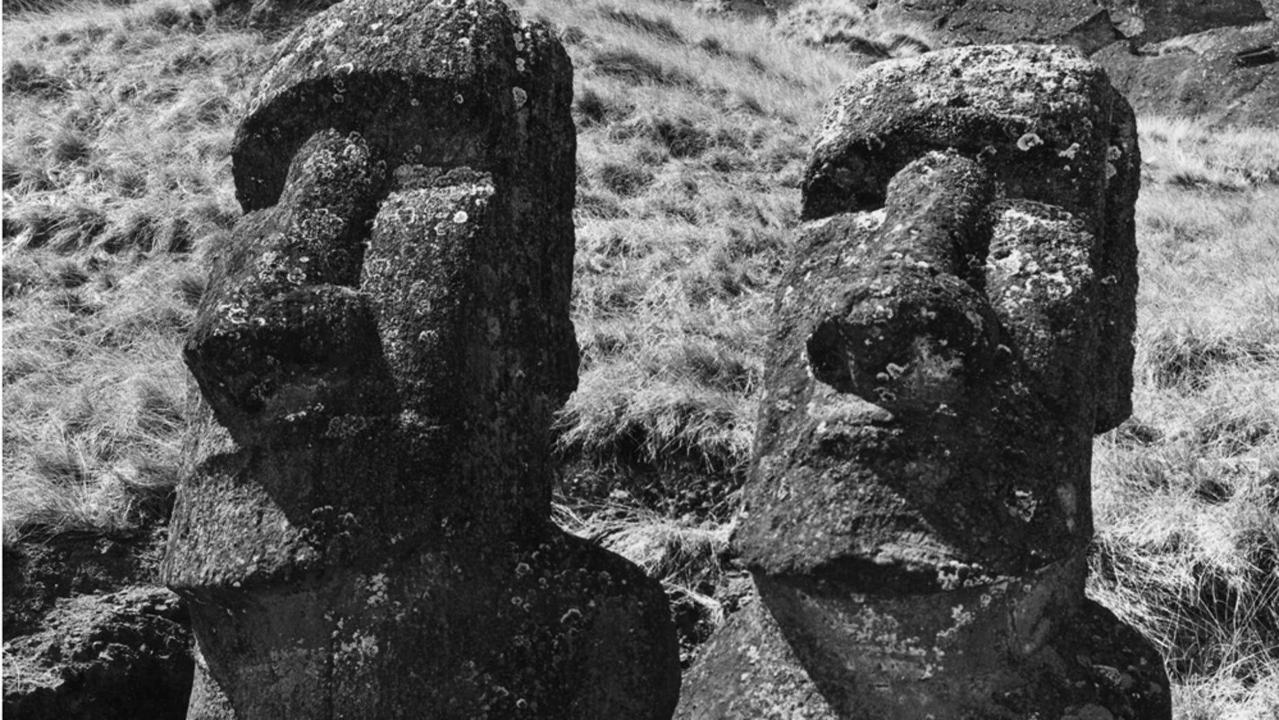 circa 1955:  Two ancient statues of uncertain origin on Easter Island, in the South Pacific Ocean.  (Photo by Richard Harrington/Three Lions/Getty Images)