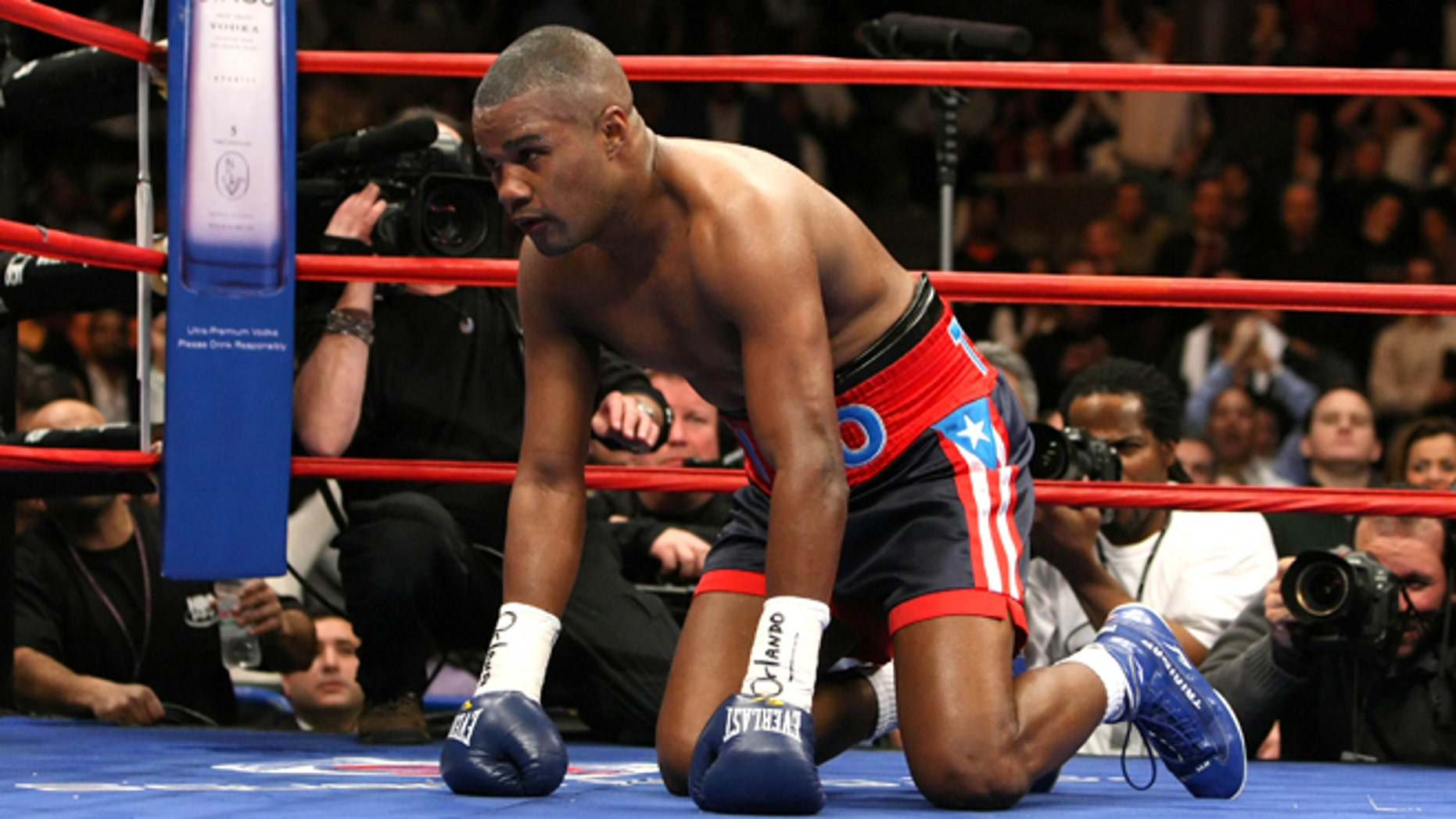NEW YORK - JANUARY 19:  Tito Trinidad kneels on the canvas after receiving a punch from Roy Jones Jr. during their Light Heavyweight bout at Madison Square Garden January 19, 2008 in New York City.  (Photo by Al Bello/Getty Images)