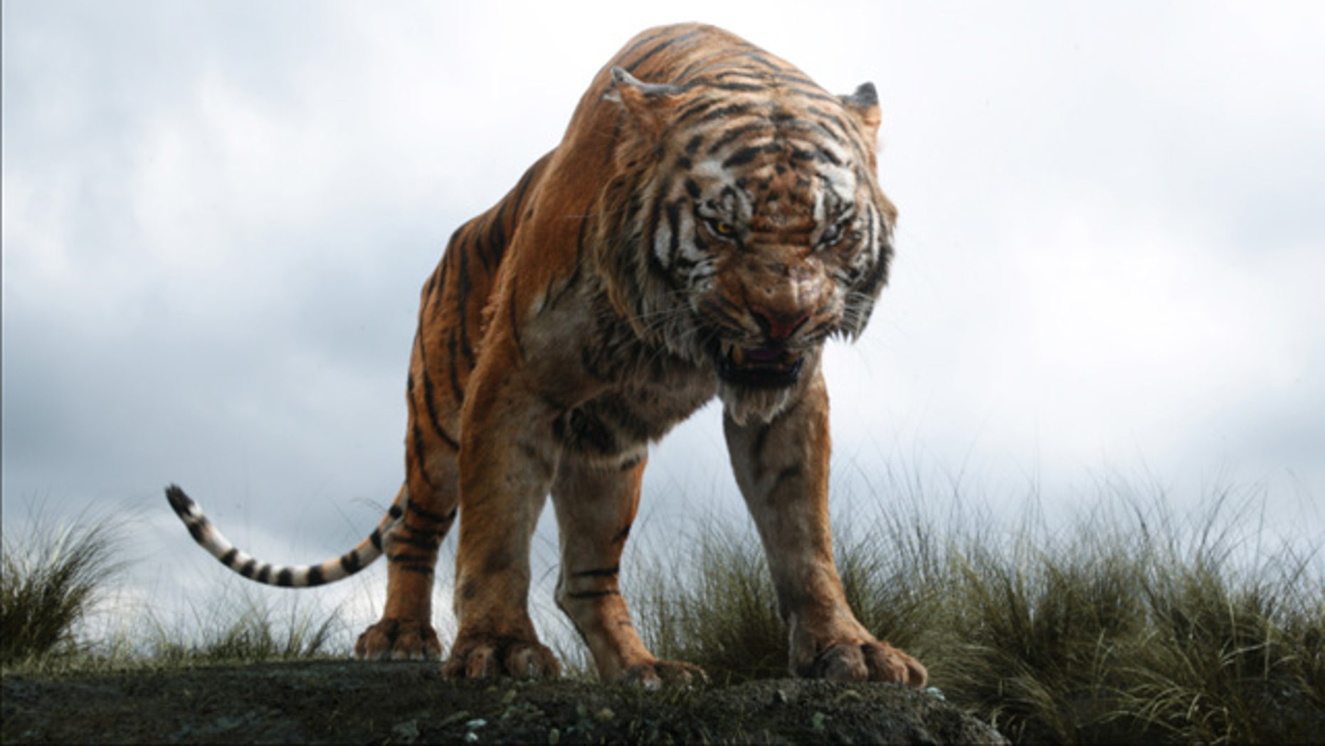 In this image released by Disney, Shere Khan the tiger, voiced by Idris Elba, appears in a scene from 'The Jungle Book.' (Disney via AP)