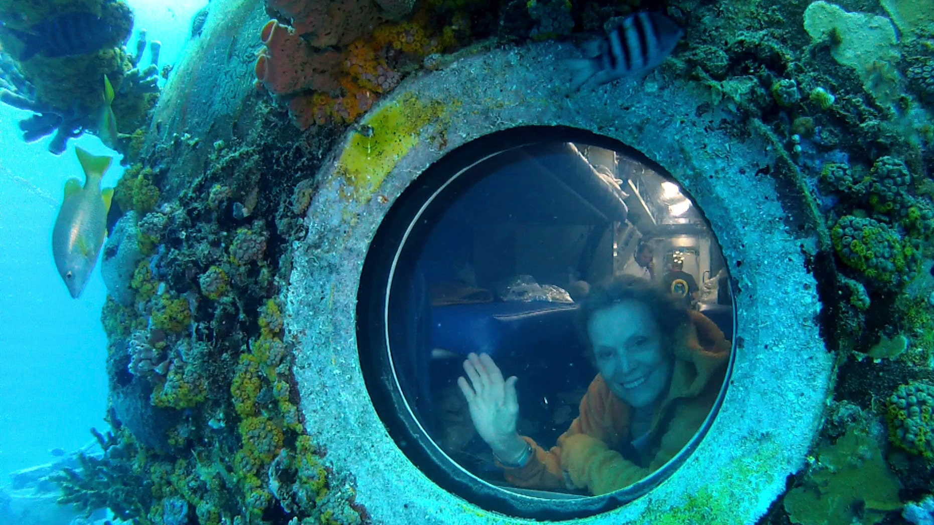 Photo released by One World One Ocean, Sylvia Earle looks out of a porthole from Aquarius, the undersea research laboratory in the Florida Keys. Aquarius is part of NOAA's National Undersea Research Program, but the budget has been cut by the federal government.