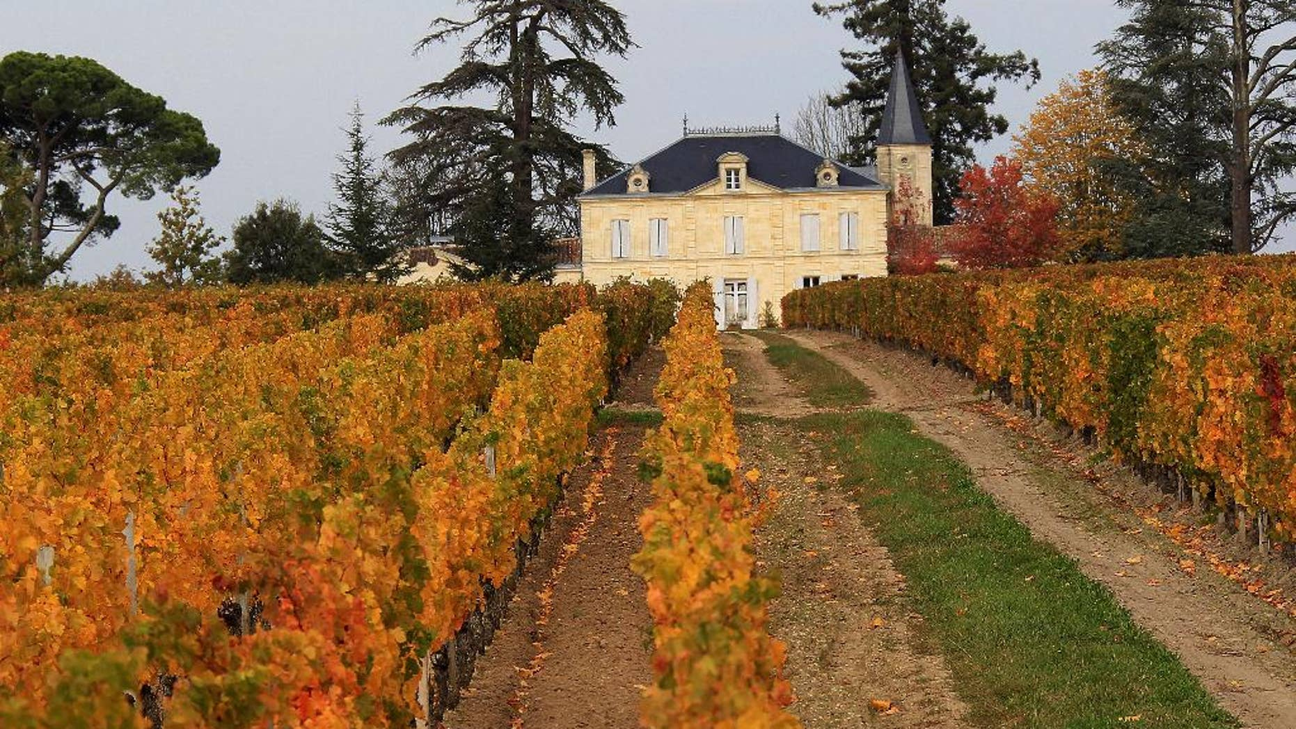 FILE - This is a Monday, Oct. 26, 2015  file photo of the  vineyards of the prestigious Cheval Blanc  in Saint Emilion, western France. Saint-Emilion is one of the principal red wine areas of Bordeaux along with the Medoc, Graves and Pomerol.  The European Union's farm federation assessed the 2015 grape harvest and said Wednesday Nov. 4, 2015 that excellent weather in many member states had pushed up production by 2.7 percent.(AP Photo/Bob Edme, File)