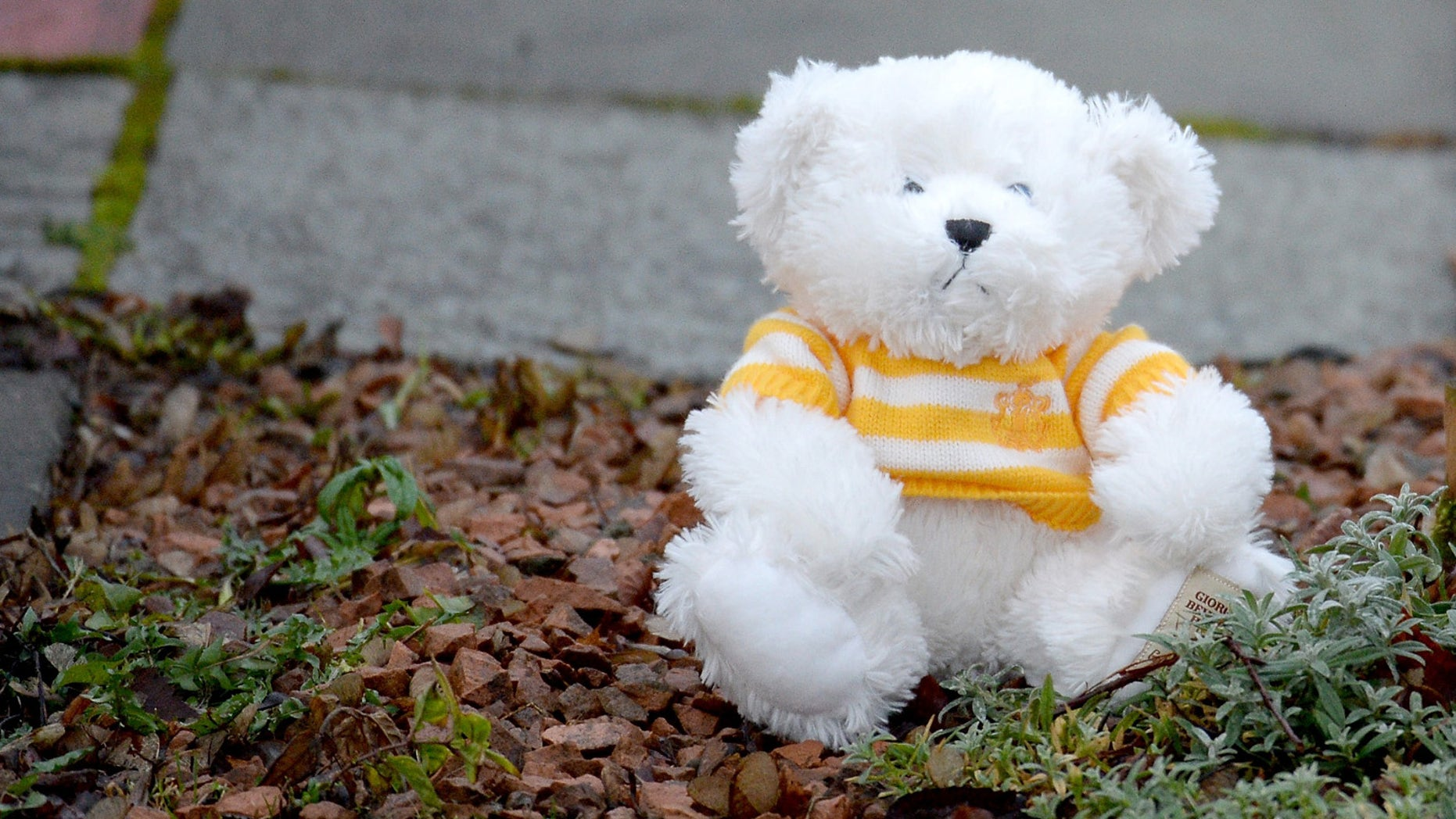 KIRKCALDY, SCOTLAND - JANUARY 18:  A teddy bear is left outside a bungalow in Dunvegan Acenue in Kirkcaldy where a young boy's body believed to be Mikaeel Kular, 3, was found last night on January 18, 2014 in Kircaldy, Scotland. Mikaeel was reported missing from his home in Edinburgh on January 15. His mother Rosdeep has been detained by police.  (Photo by Jeff J Mitchell/Getty Images)