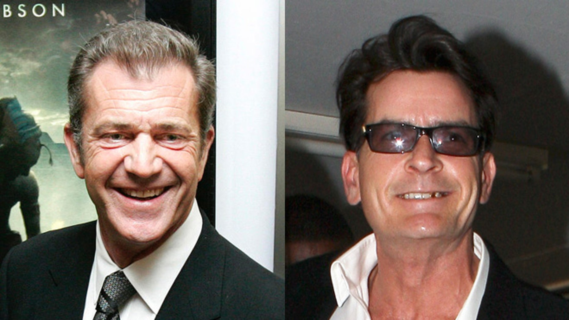 """Gibson and Sheen are set to appear in Robert Rodriguez's new film """"Machete Kills."""""""