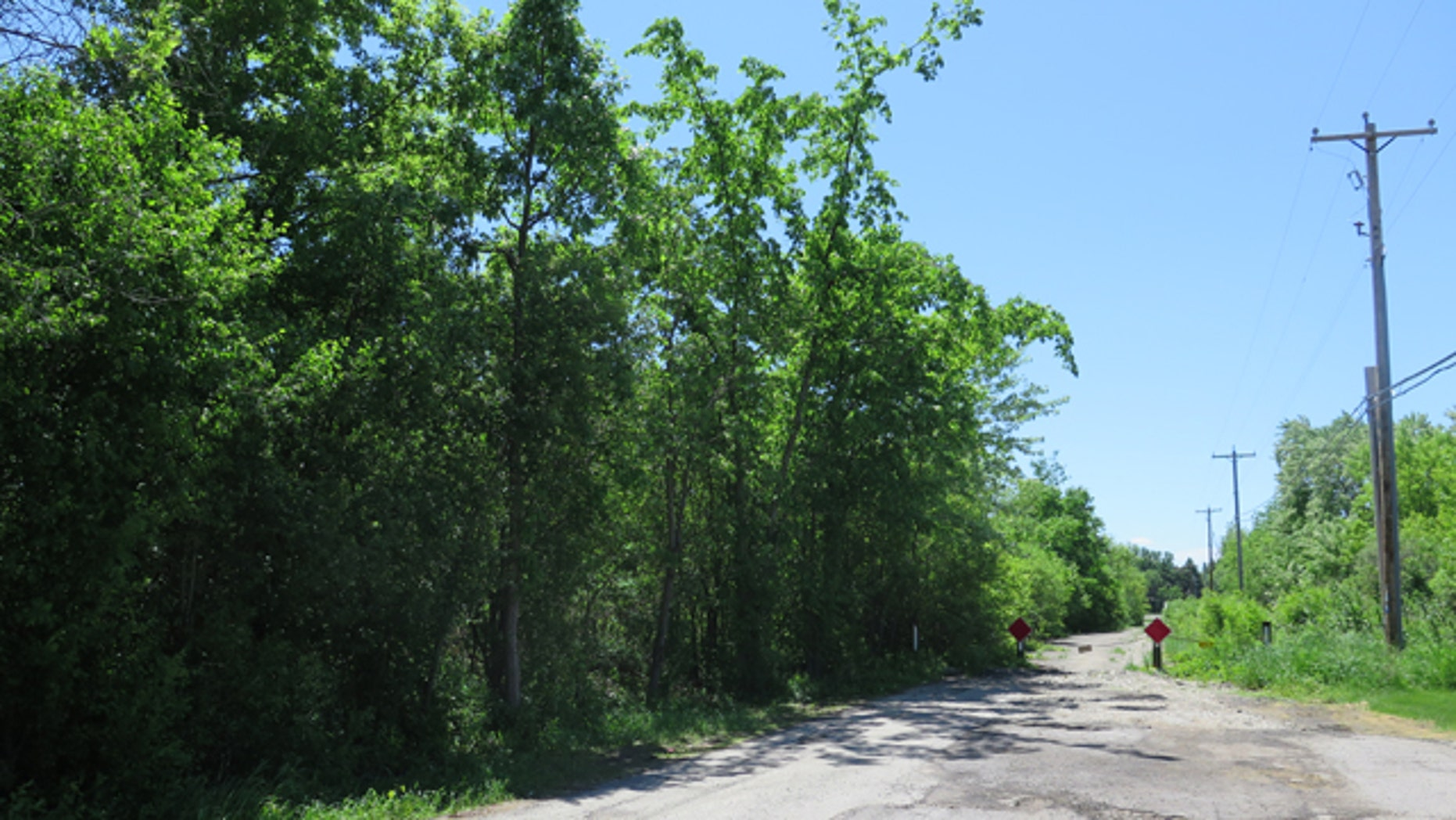 June 3, 2014: This photo shows the site in Waukesha, Wis., where a bicyclist found a 12-year-old girl who had 19 stab wounds. Two 12-year-old girls are accused of stabbing the girl in the woods to please a fictional character they learned about online. (AP Photo/Carrie Antlfinger, File)