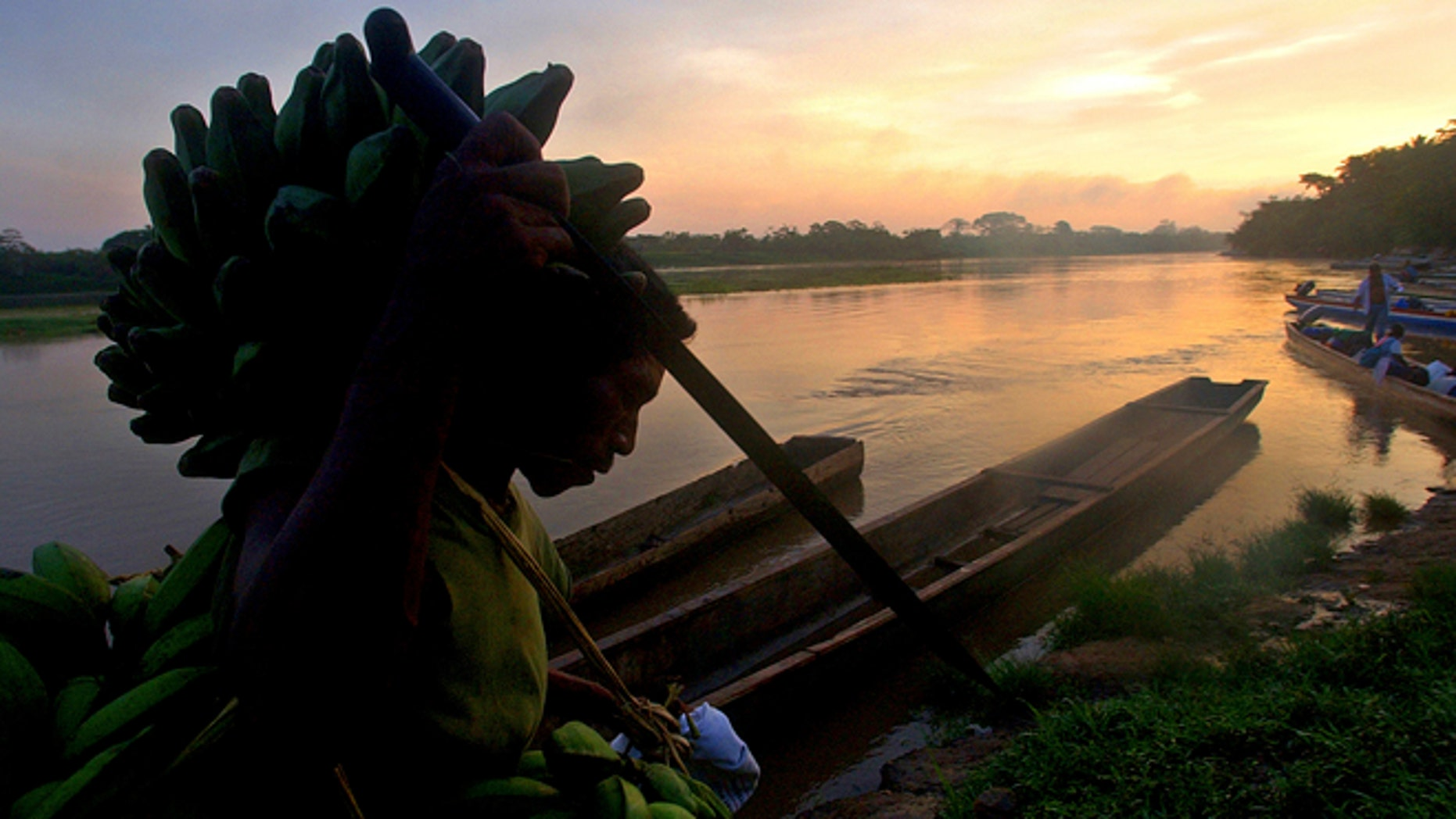 A Miskito Indian carries bananas on his head on the banks of the Coco river near the town of Waspan, Nicaragua, on the border with Honduras.