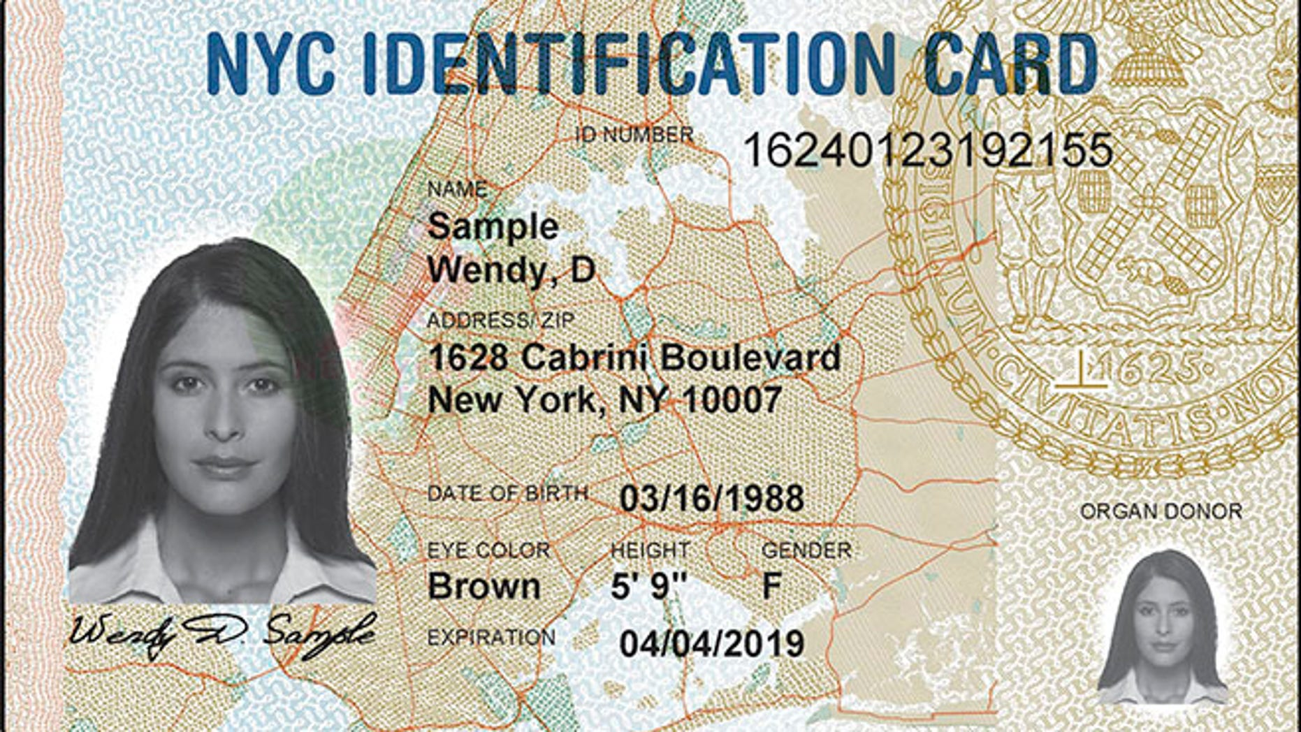A sample ID card issued by New York City.