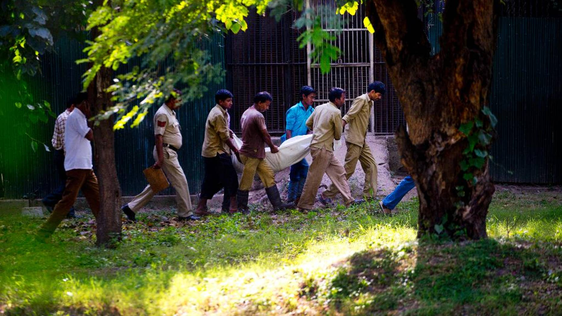 Sept. 23, 2014: Workers carry the body of a man who was killed by a white tiger past its cage at the zoo in New Delhi, India. The white tiger killed the man who climbed over a fence and jumped into the animal's enclosure Tuesday, a spokesman said.