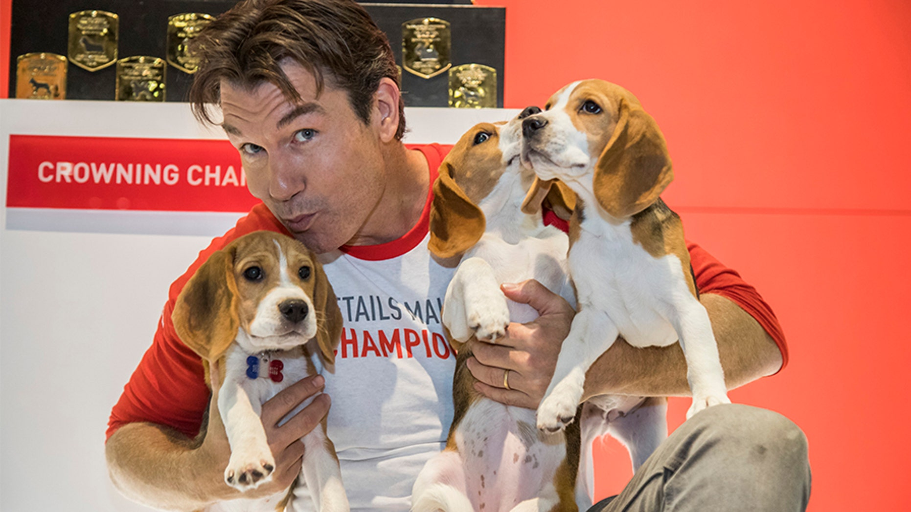 Jerry O'Connell serves as this year's celebrity host for the AKC National Championship Presented by Royal Canin, premiering on Animal Planet on New Year's Day.