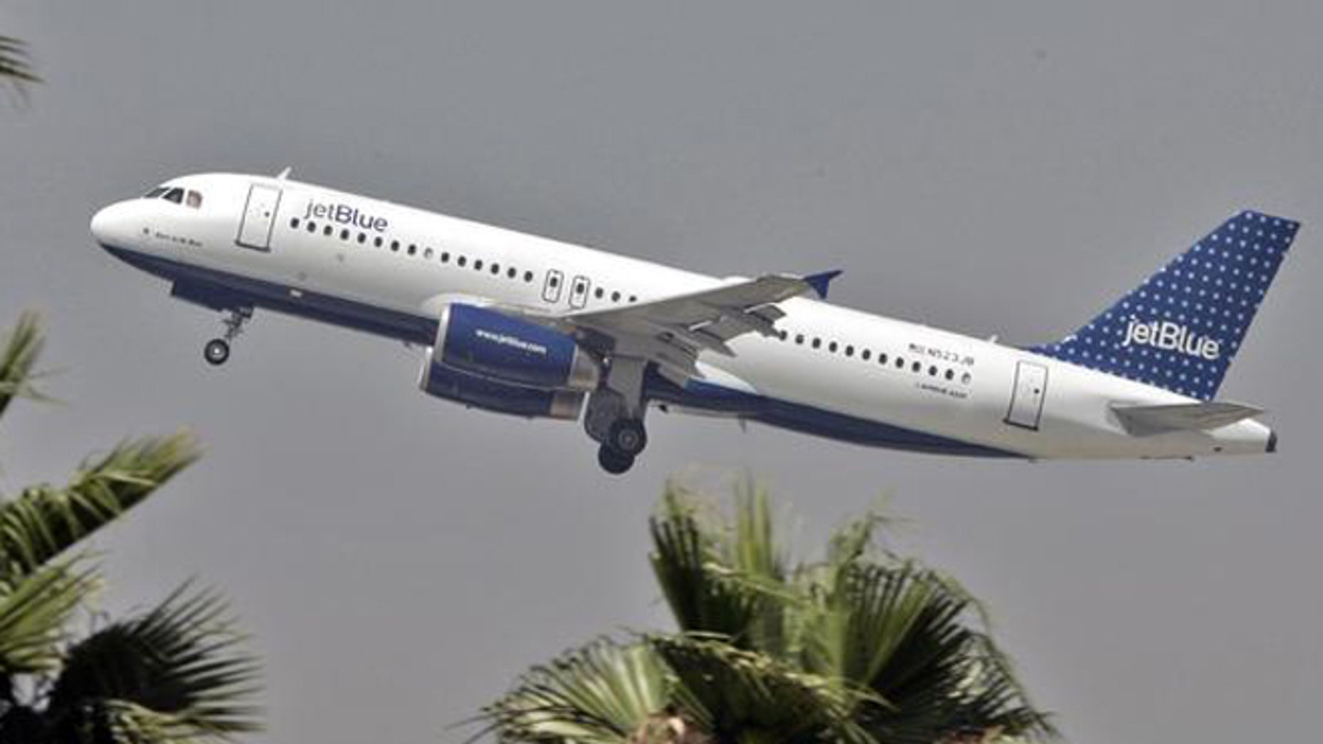 The FBI said a Jetblue flight was targeted by a laser in December 2013, temporarily blinding the pilot.