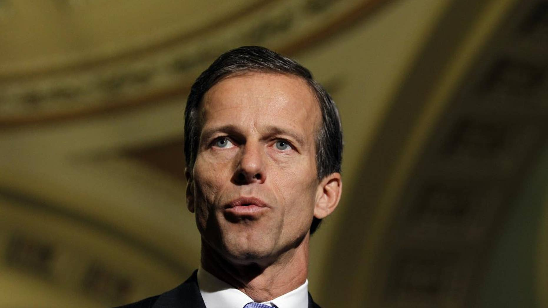 Sen. John Thune, R-S.D., speaks during a news conference on Capitol Hill in Washington Tuesday, Nov. 16, 2010.(AP Photo/Alex Brandon)