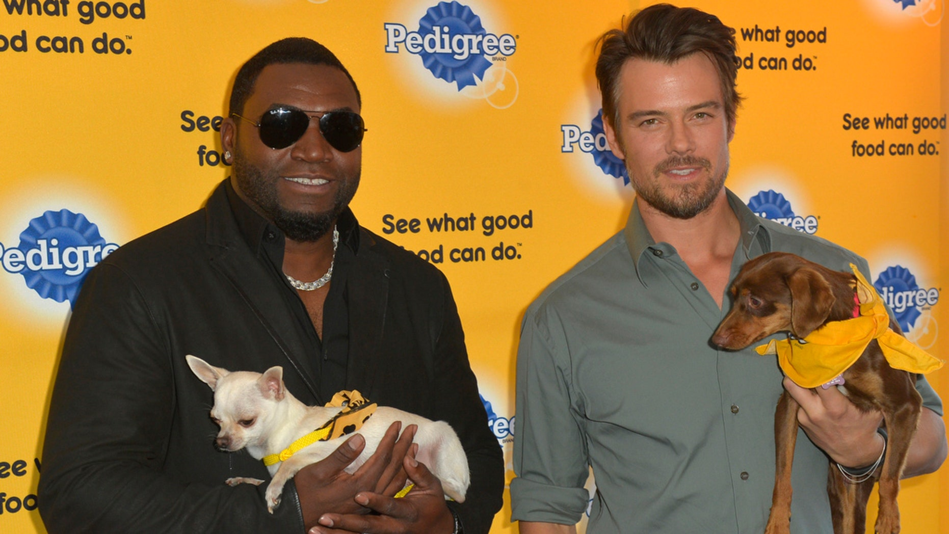 """Dog lovers David Ortiz and Josh Duhamel kick-off the PEDIGREE¨ Brand """"See what good food can do"""" campaign at the 2014 Sundance Film Festival Monday Jan. 20, 2014, in Park City, Utah."""