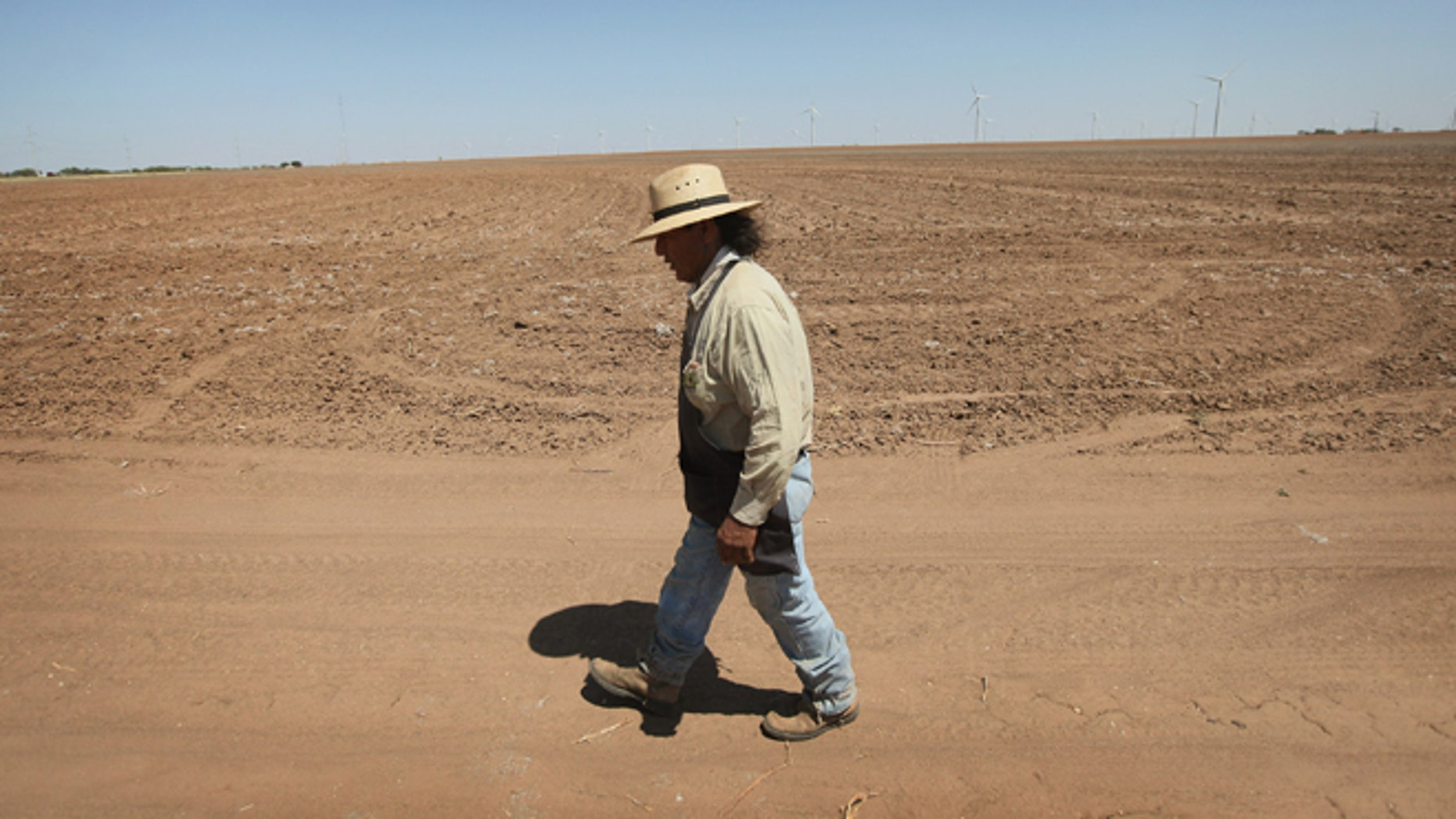 """HERMLEIGH, TX - JULY 27: Juan Rico walks by a barren cotton field July 27, 2011 near Hermleigh, Texas. A severe drought has caused the majority of dry-land (non-irrigated fields) cotton crops to fail in the region. The past nine months have been the driest in Texas since record keeping began in 1895, with 75% of the state classified as """"exceptional drought"""", the highest classification.  (Photo by Scott Olson/Getty Images)"""