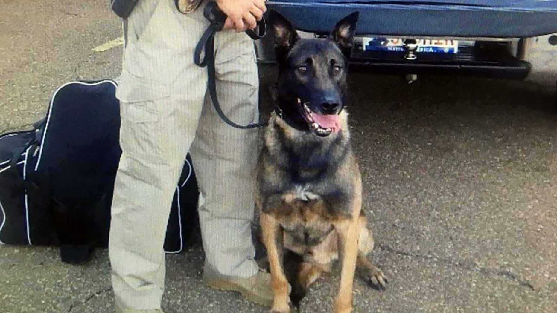 Dex, a K-9 officer with the Hinds County Sheriff's Department, died after suffering a heat stroke.