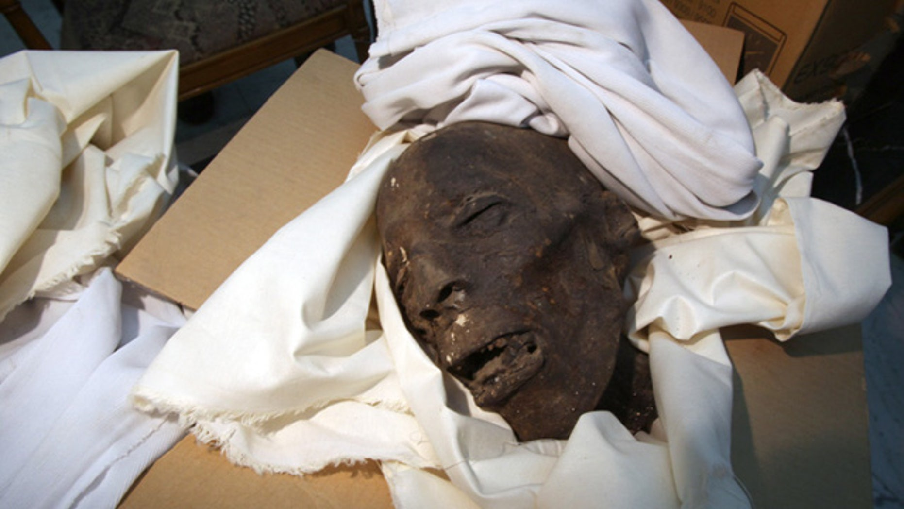 One of the Late Period Skull in the storage room next to the CT scanner lab at the Egyptian Museum, Cairo.