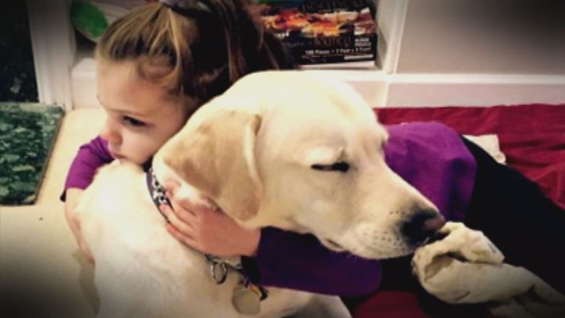 Kye and her service dog London.
