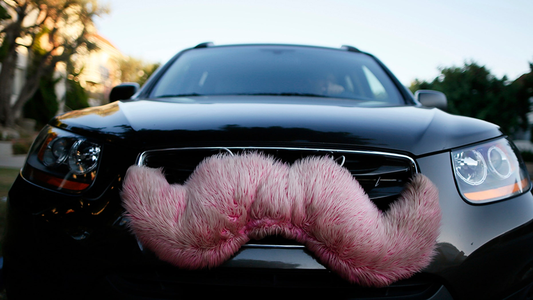 A Lyft driver reportedly kicked out a gay couple after they kissed in the backseat in Indianapolis, IN.