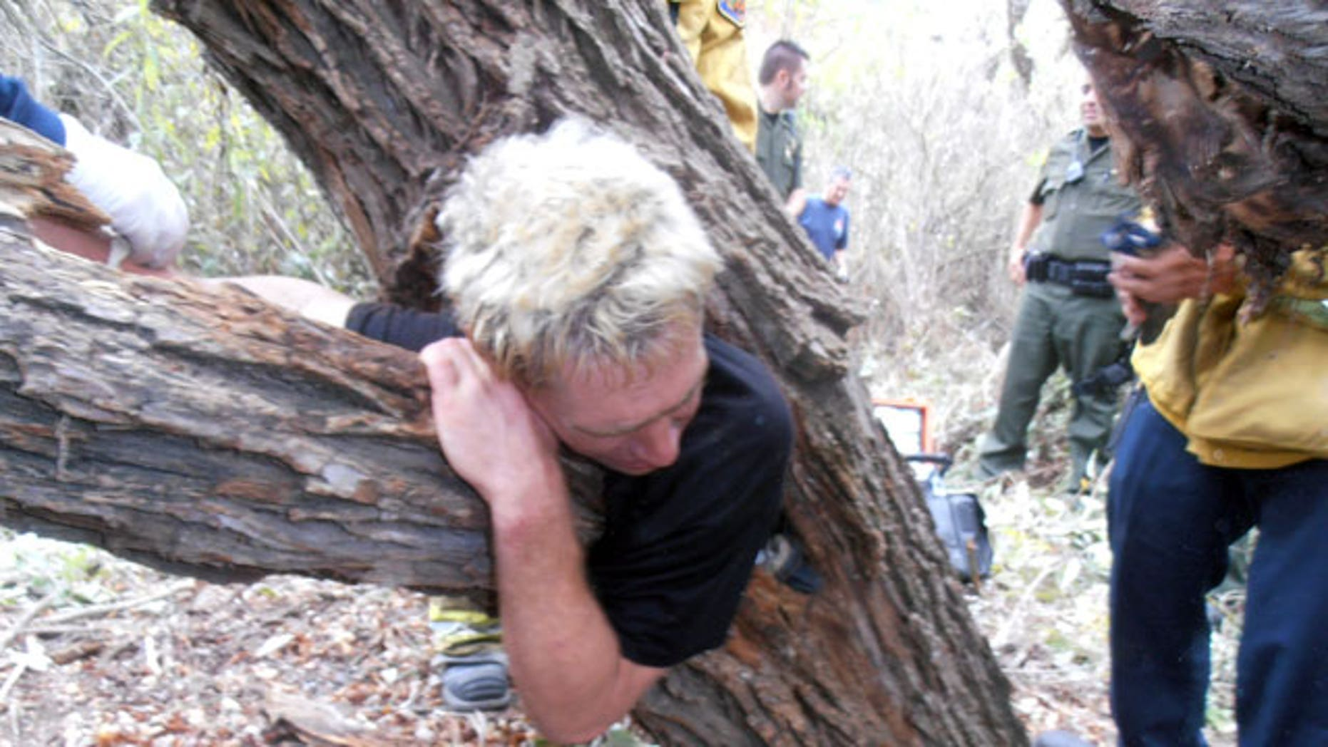 October 25, 2011: This image provided by the Orange County Fire Authority shows officials and rescue personnel around a man who became stuck in a tree  in Laguna Hills, Calif.