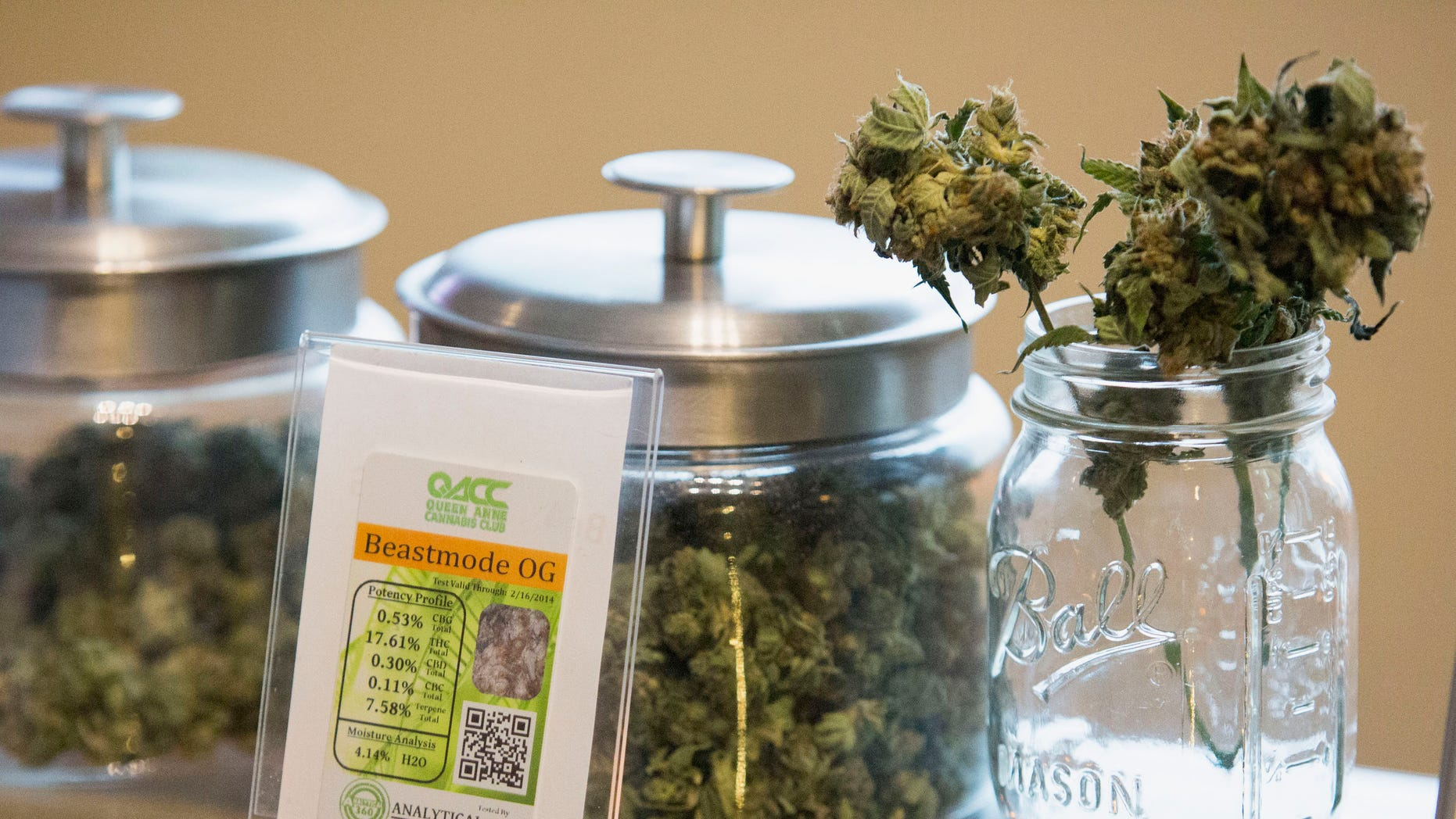 Jars of marijuana are pictured in the Queen Anne Cannabis Club  in Seattle, Washington January 28, 2014. (REUTERS/Jason Redmond)