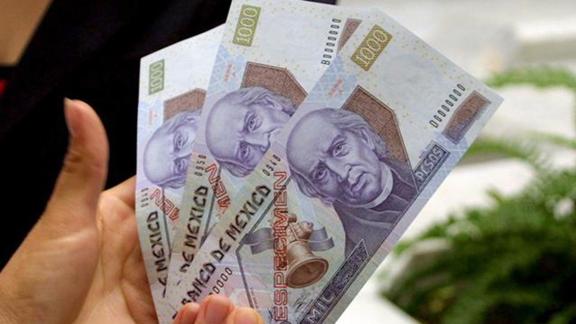 A woman show the new 1,000 peso bill , the largest denomination available in the currency, Thursday, Nov. 4, 2004, in Mexico City.The bill, worth US$87 and 68, will begin circulating on Nov. 15, 2004.  About 50 million will be put into circulation.(AP Photo)