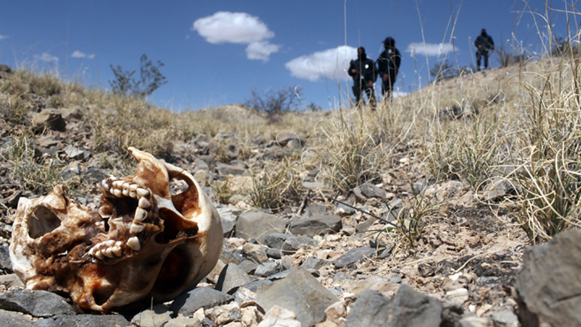 JUAREZ, MEXICO - MARCH 19:  Mexican police stand near a skull discovered with other remains in what is thought to be a large grave in the desert of victims of recent drug violence on March 19, 2010 in the county ofJuarez, Mexico. The border city of Juarez has been racked by violent drug related crime recently and has quickly become one of the most dangerous cities in the world to live. As drug cartels have been fighting over ever lucrative drug corridors along the United States border, the murder rate in Juarez has risen to 173 slayings for every 100,000 residents. President Felipe Calderon's strategy of sending 7000 troops to Juarez has not mitigated the situation. With a population of 1.3 million, 2,600 died in drug-related violence last year and 500 so far this year, including two Americans who worked for the U.S. Consulate last weekend as they returned from a children's party.  (Photo by Spencer Platt/Getty Images)