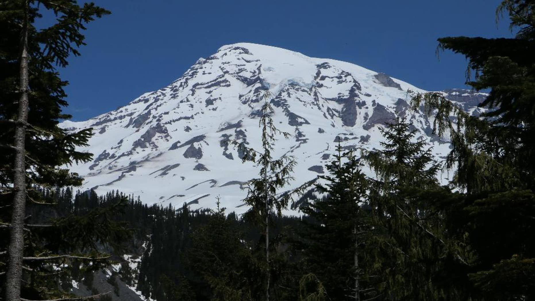 Mount Rainier is seen in the distance from a viewpoint within Mount Rainier National Park on Sunday, June 1, 2014. Park officials said that there are no immediate plans to recover the bodies of six climbers who likely fell thousands of feet to their deaths in the worst alpine accident on the mountain in decades.(AP Photo/Rachel La Corte)