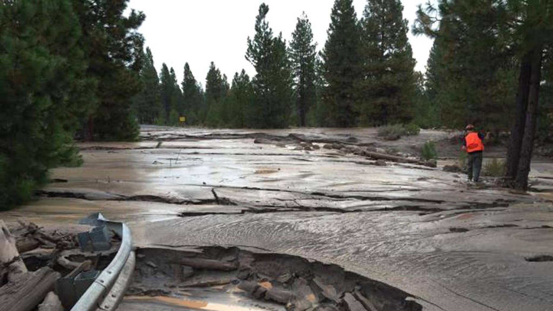 This Sunday, Sept. 21, 2014 photo provided by the U.S. Forest Service shows a mud flow along Mud Creek Canyon in the Shasta-Trinity National Forest. The largest mudslide on Northern California's Mt. Shasta in two decades may be related to California's prolonged drought, experts said Sunday. The mudslide began Saturday, Sept. 20, 2014 after a glacier holding pockets of water either shifted or melted, releasing water down the southeastern side of Mt. Shasta, said Andrea Capps, a spokeswoman for Shasta-Trinity National Forest. (AP Photo/U.S. Forest Service)