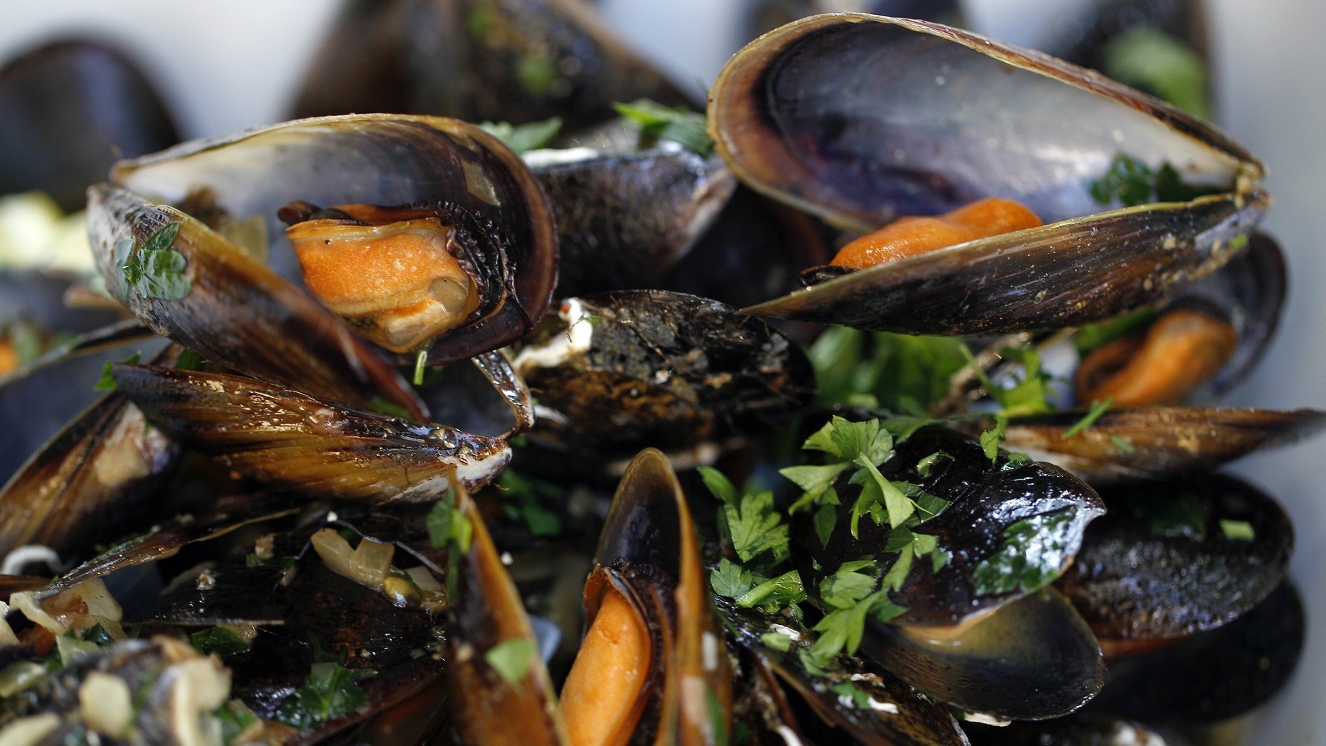 Mussels in white wine and tomato sauce.