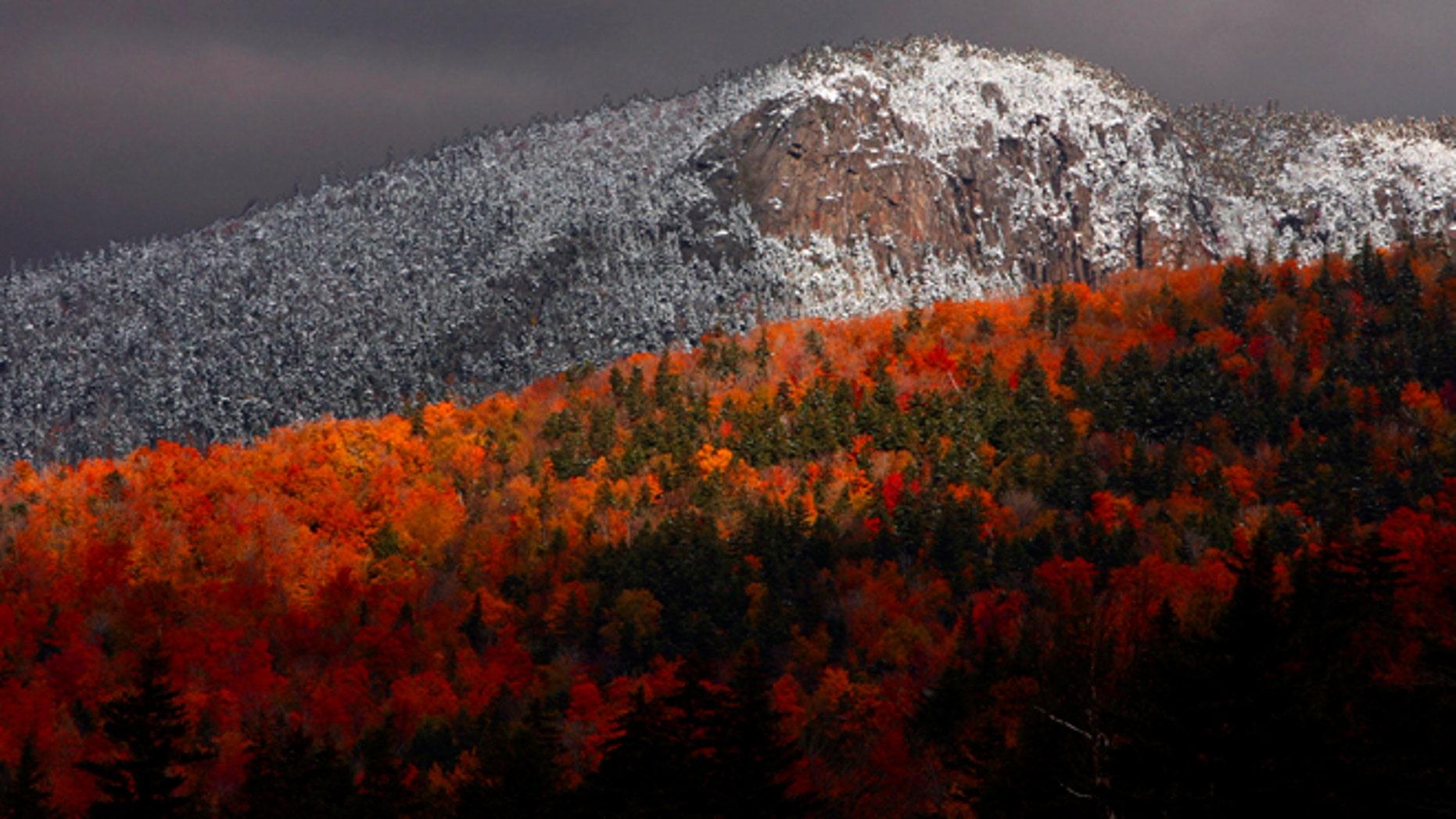Fall foliage Twin Mountain, N.H.