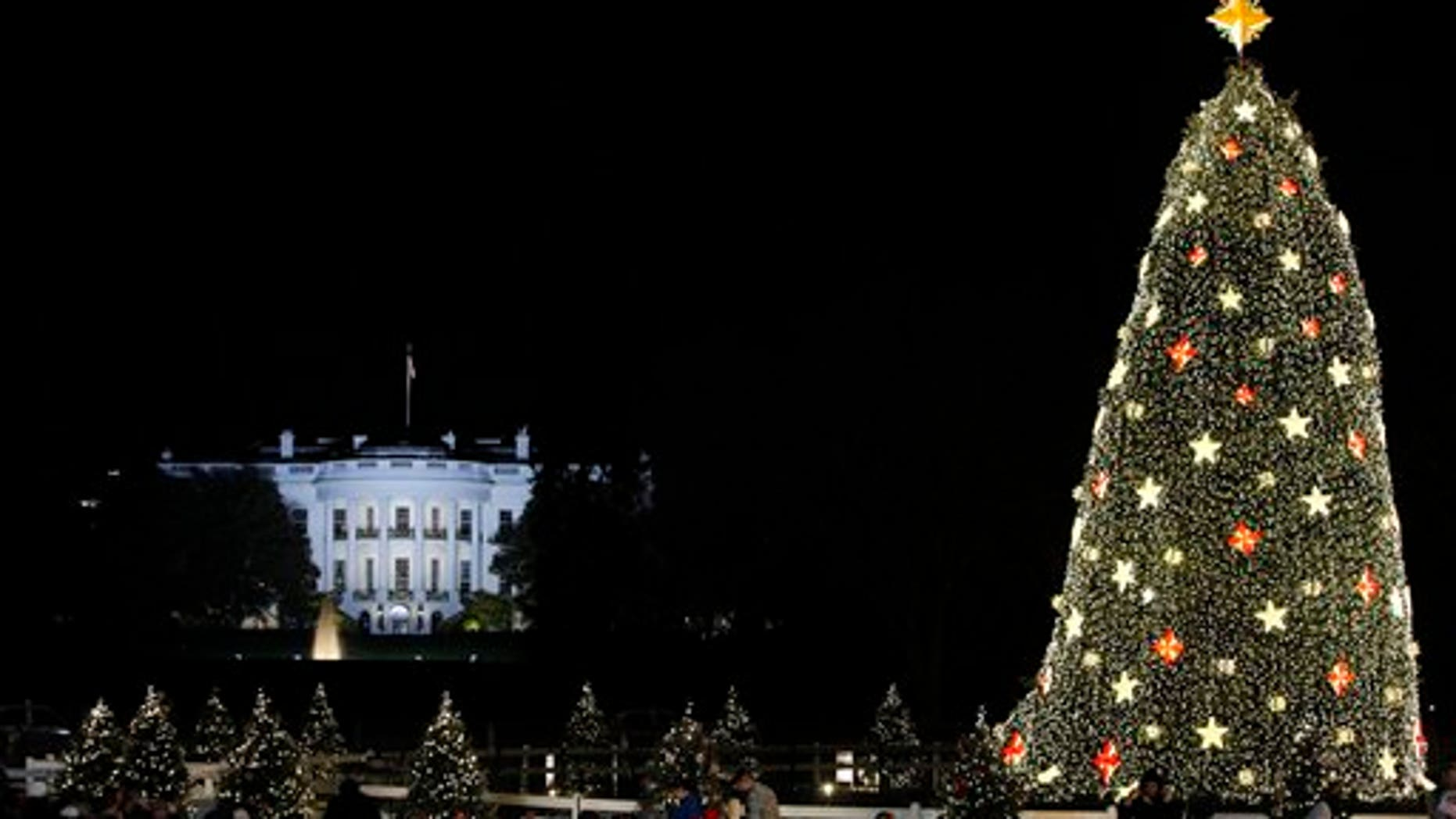 The White House is seen in the background after the lighting of the National Christmas Tree, Thursday, Dec. 3, 2009, in Washington. (AP Photo/Haraz N. Ghanbari)