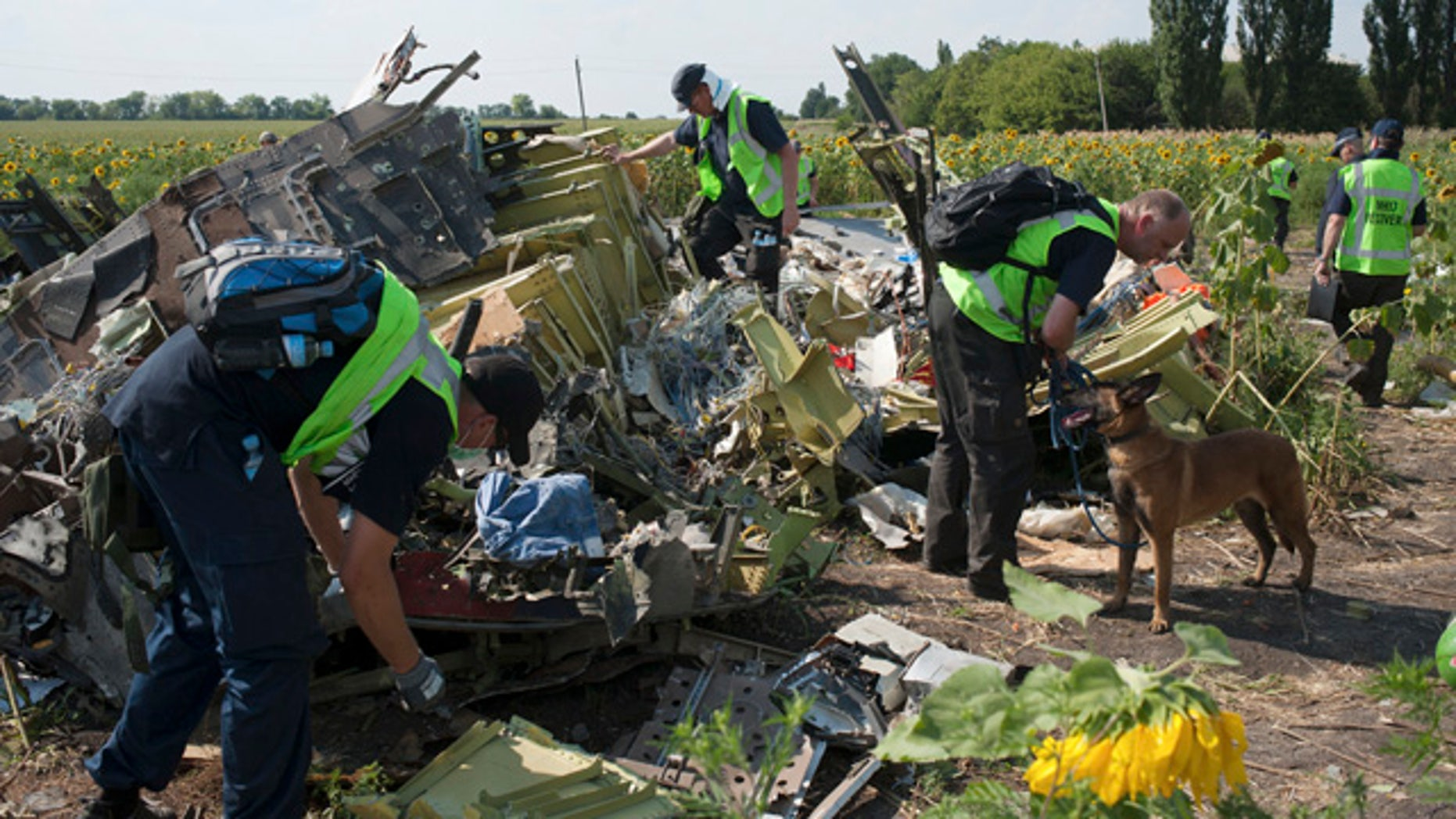 FILE - In this Tuesday, Aug. 5, 2014 file photo,  Australian, Malaysian and Dutch investigators examine pieces of the downed Malaysia Airlines Flight 17 plane, near the village of Rossipne, Donetsk region, eastern Ukraine. (AP Photo/File)