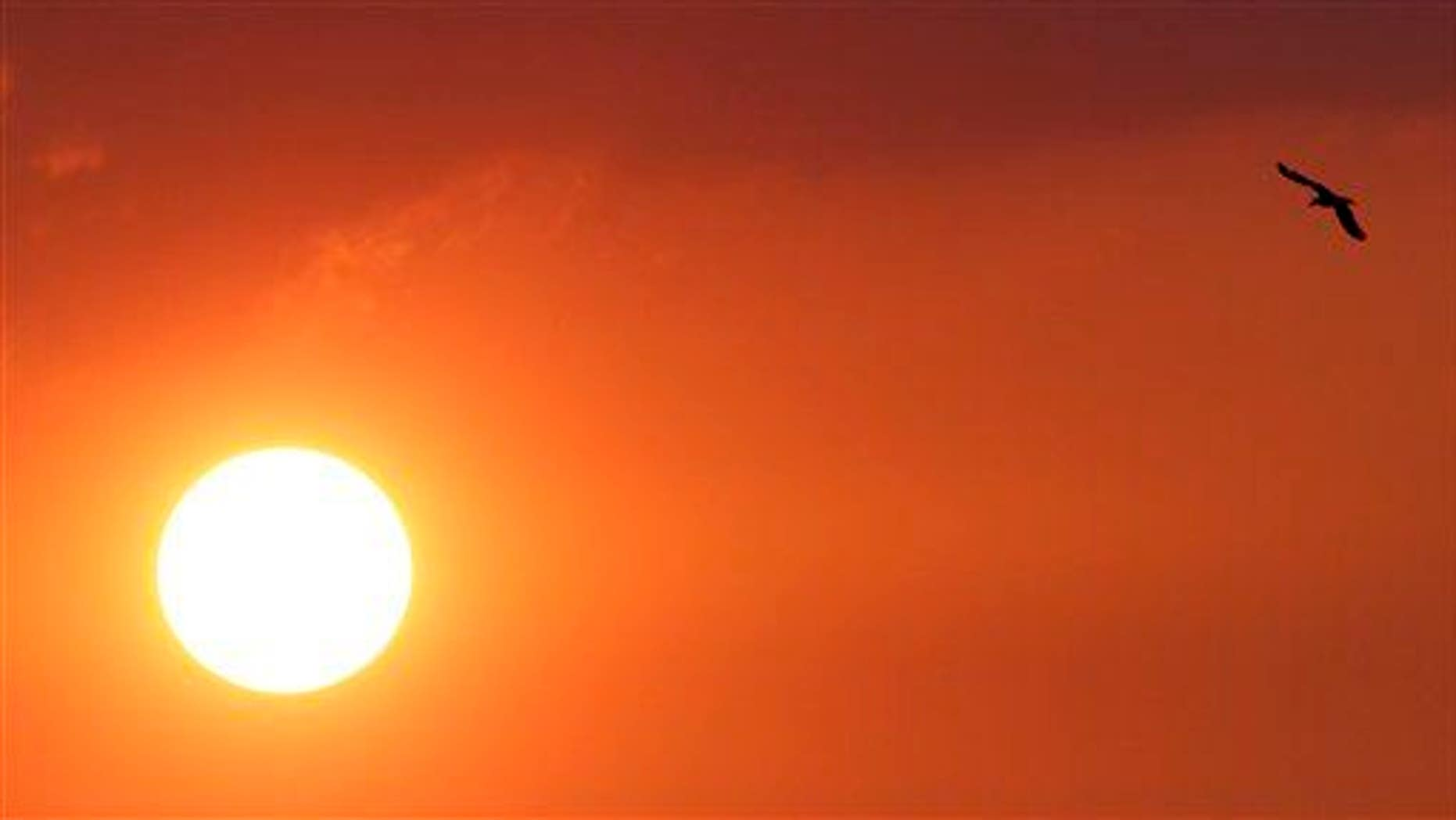 Ocean temperatures might provide an early warning about heat waves on the East Coast.