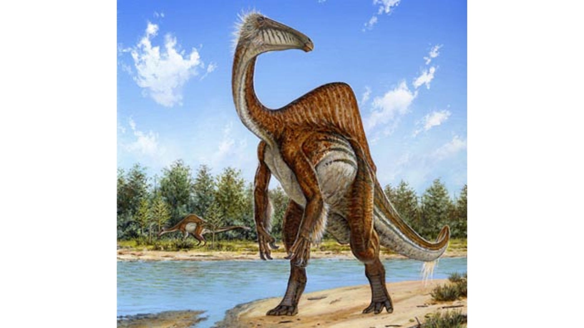 This undated handout image provided by Michael Skrepnick, Dinosaurs in Art, Nature Publishing Group, shows a Deinocheirus. (AP Photo/Michael Skrepnick, Dinosaurs in Art, Nature Publishing Group)