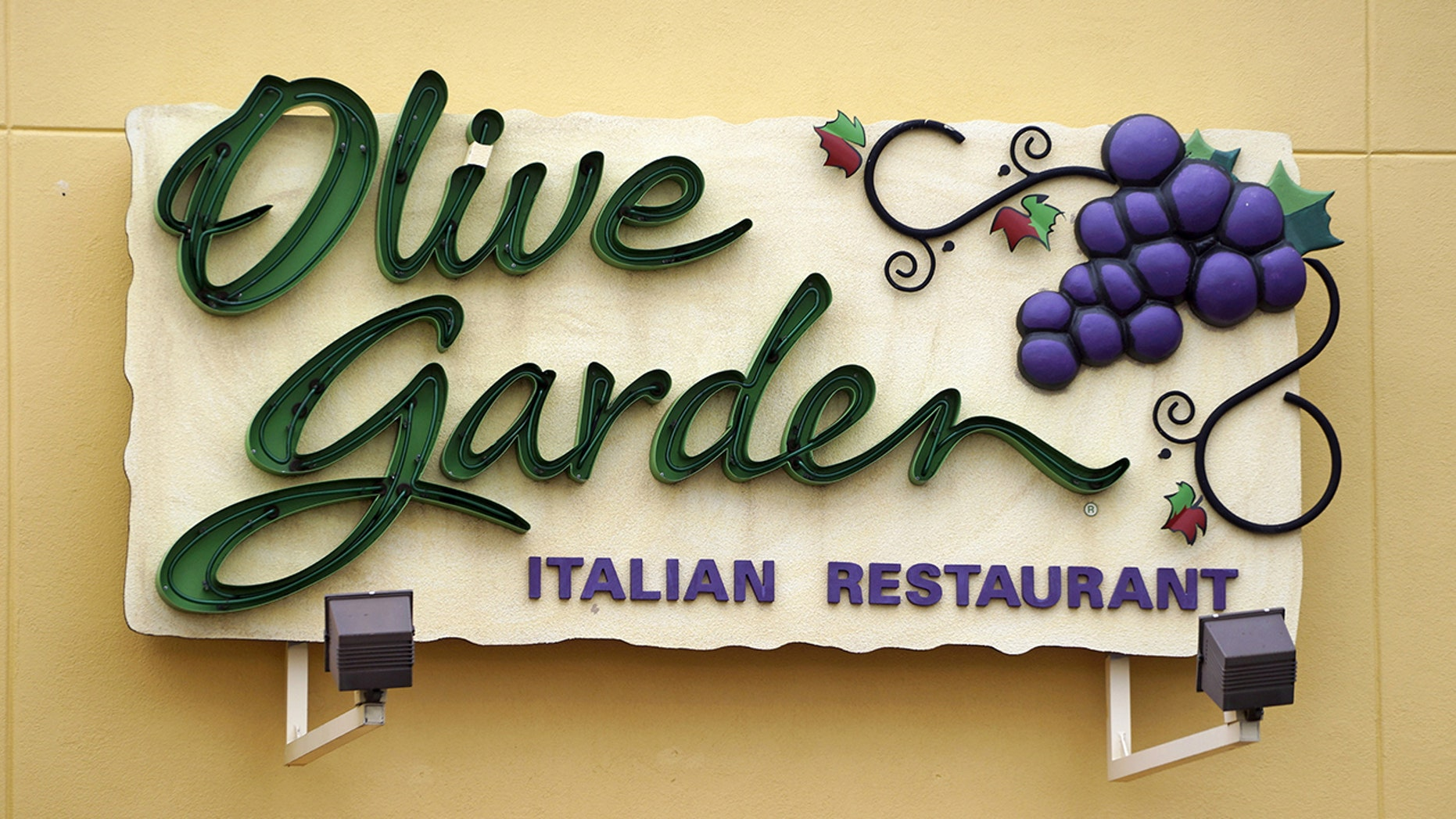 Olive Garden has unveiled their latest -- Loaded pasta chips that come with deep-fried lasagna noodles covered in meat and alfredo sauce.