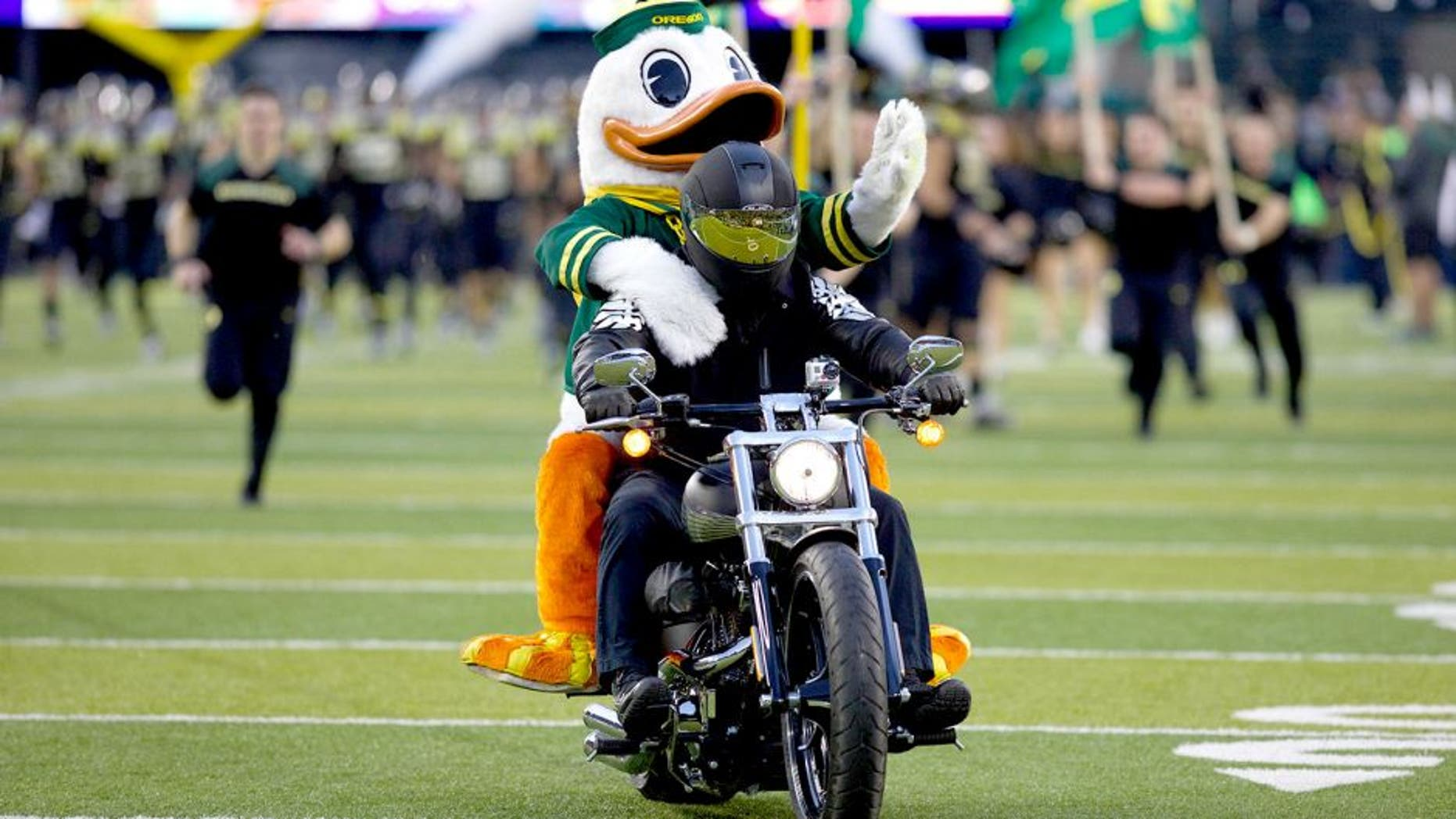 Nov 1, 2014; Eugene, OR, USA; Oregon Ducks mascot rides on a motorcycle before the start of the game against the Stanford Cardinal at Autzen Stadium. Mandatory Credit: Scott Olmos-USA TODAY Sports