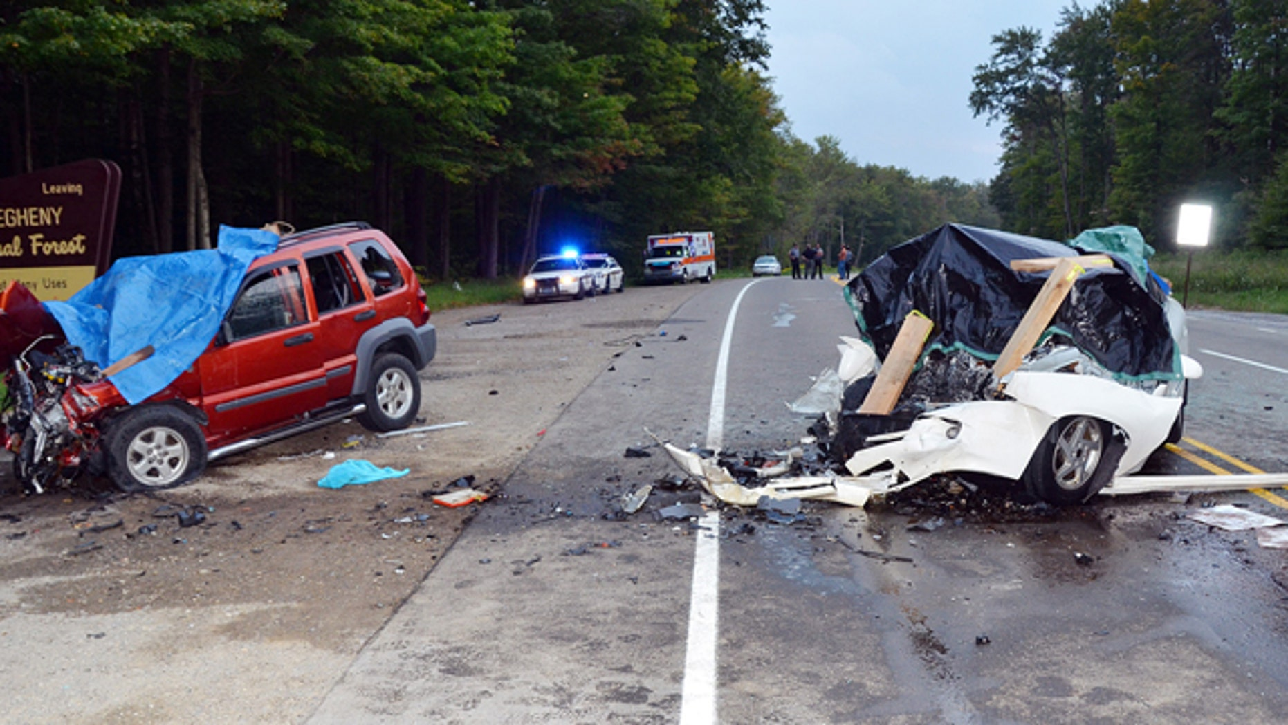 Aug. 31, 2013: The wreckage of two cars which collided on U.S. Route 219 in Hamlin Township, Pa.