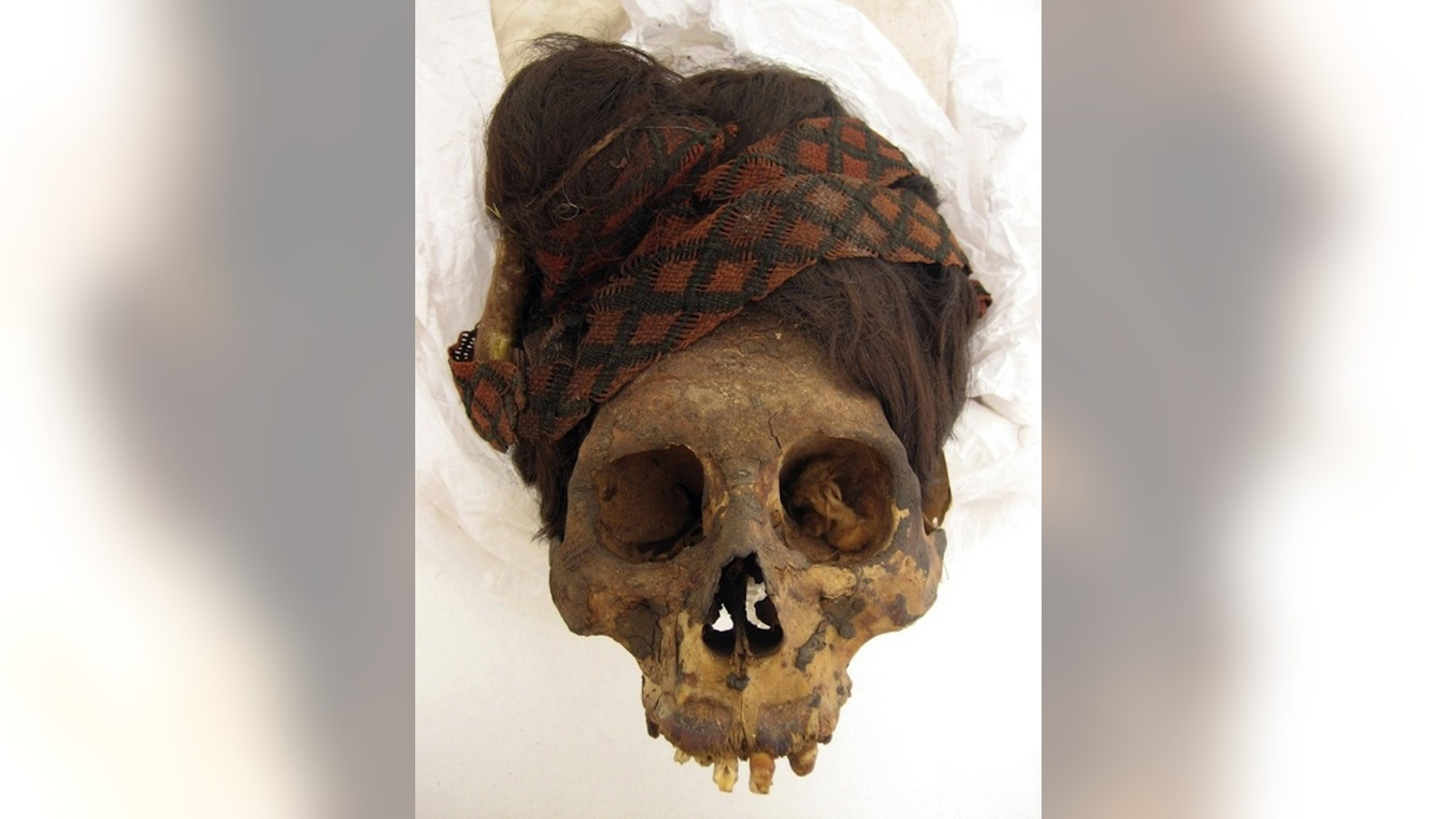 To learn more about the mummies' diets, the researchers took hair samples from 14 individuals and two hair artifacts found at the Paracas Necropolis. This individual wears a red and black headdress.