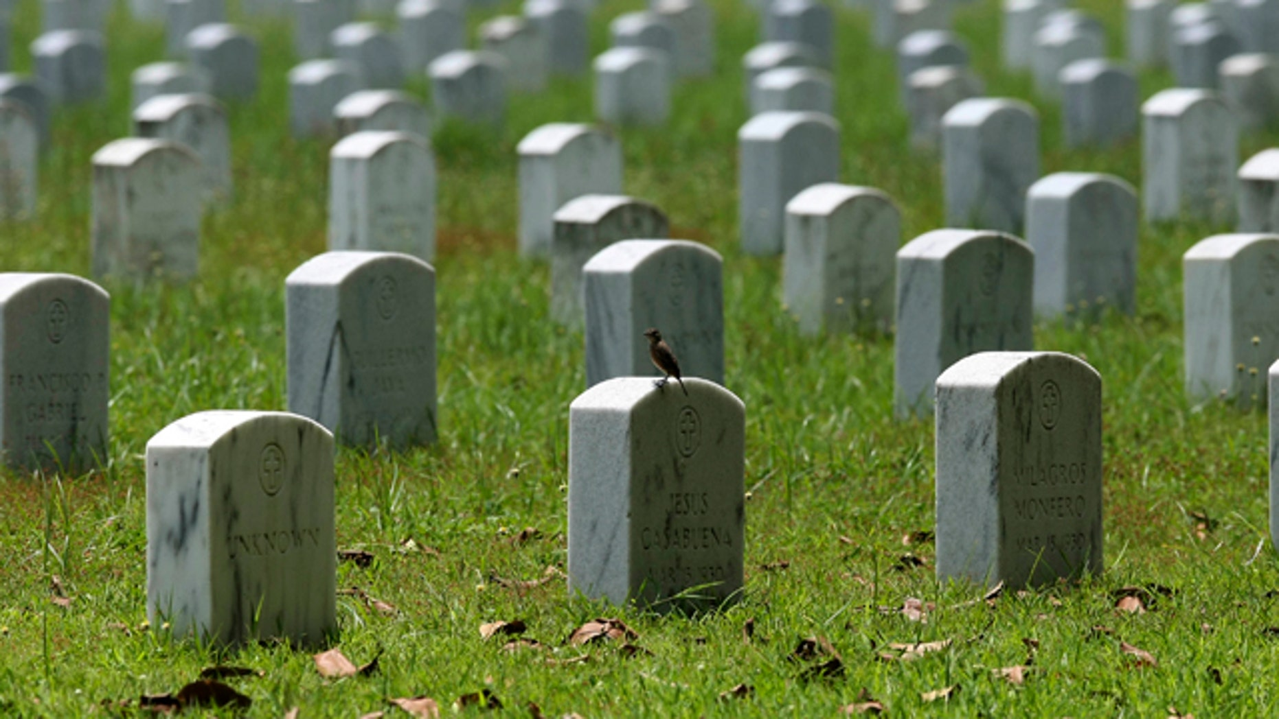 July 1: A bird is perched on one of the tombstones at Clark Veterans Cemetery.