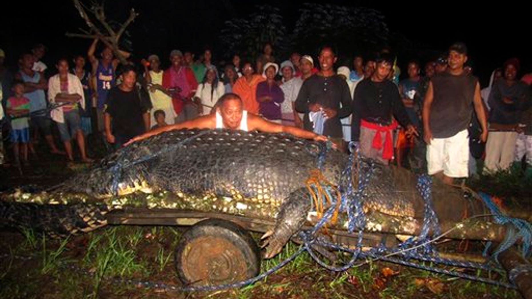 Sept. 4, 2011: Mayor Cox Elorde of Bunawan township, Agusan del Sur Province, pretends to measure a huge crocodile which was captured by residents and crocodile farm staff along a creek in Bunawan.