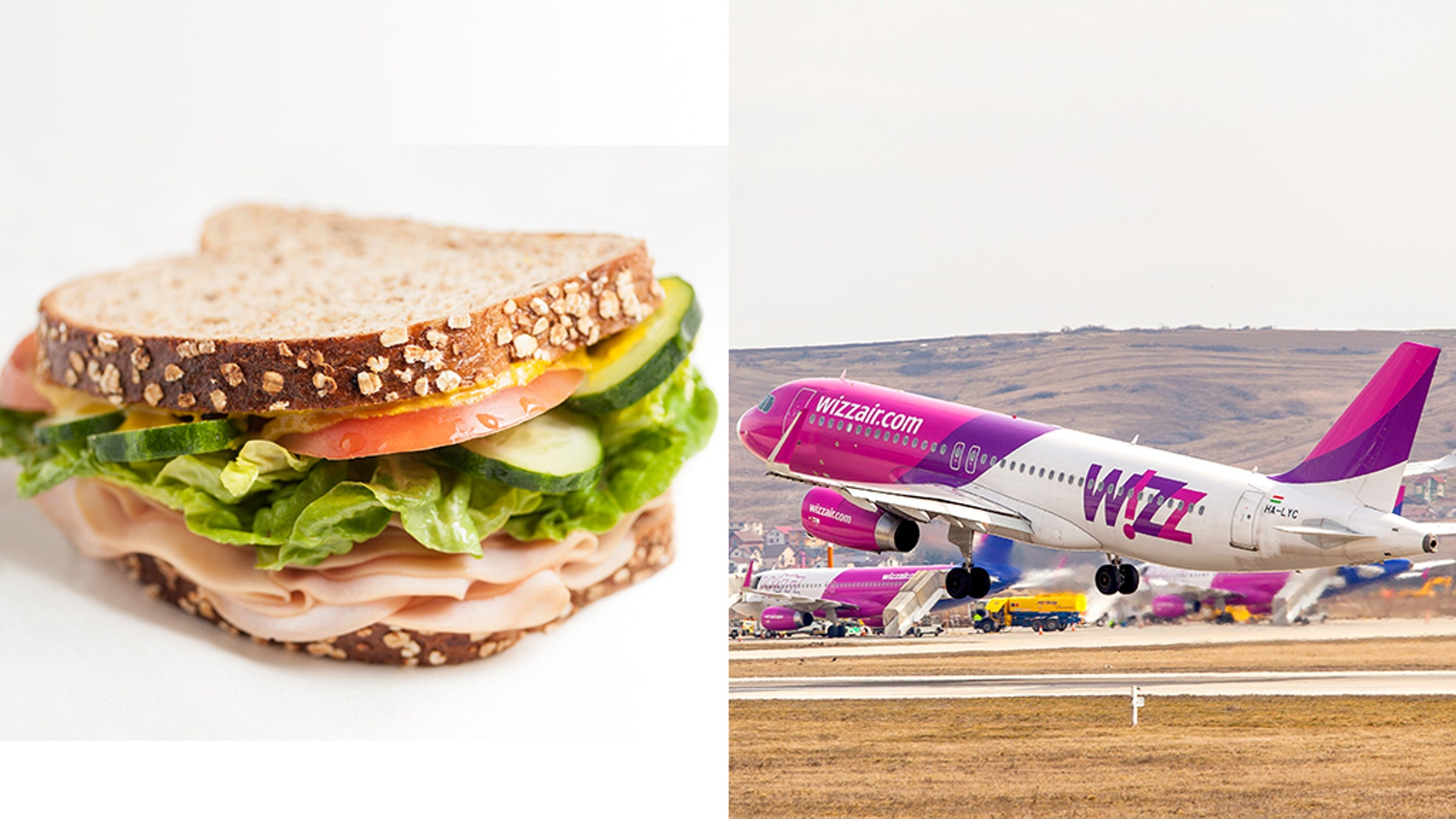 """During the flight a passenger claimed that his turkey ham sandwich """"didn't taste like turkey"""", before flying into a rage when seeing the word """"ham"""" on the label."""