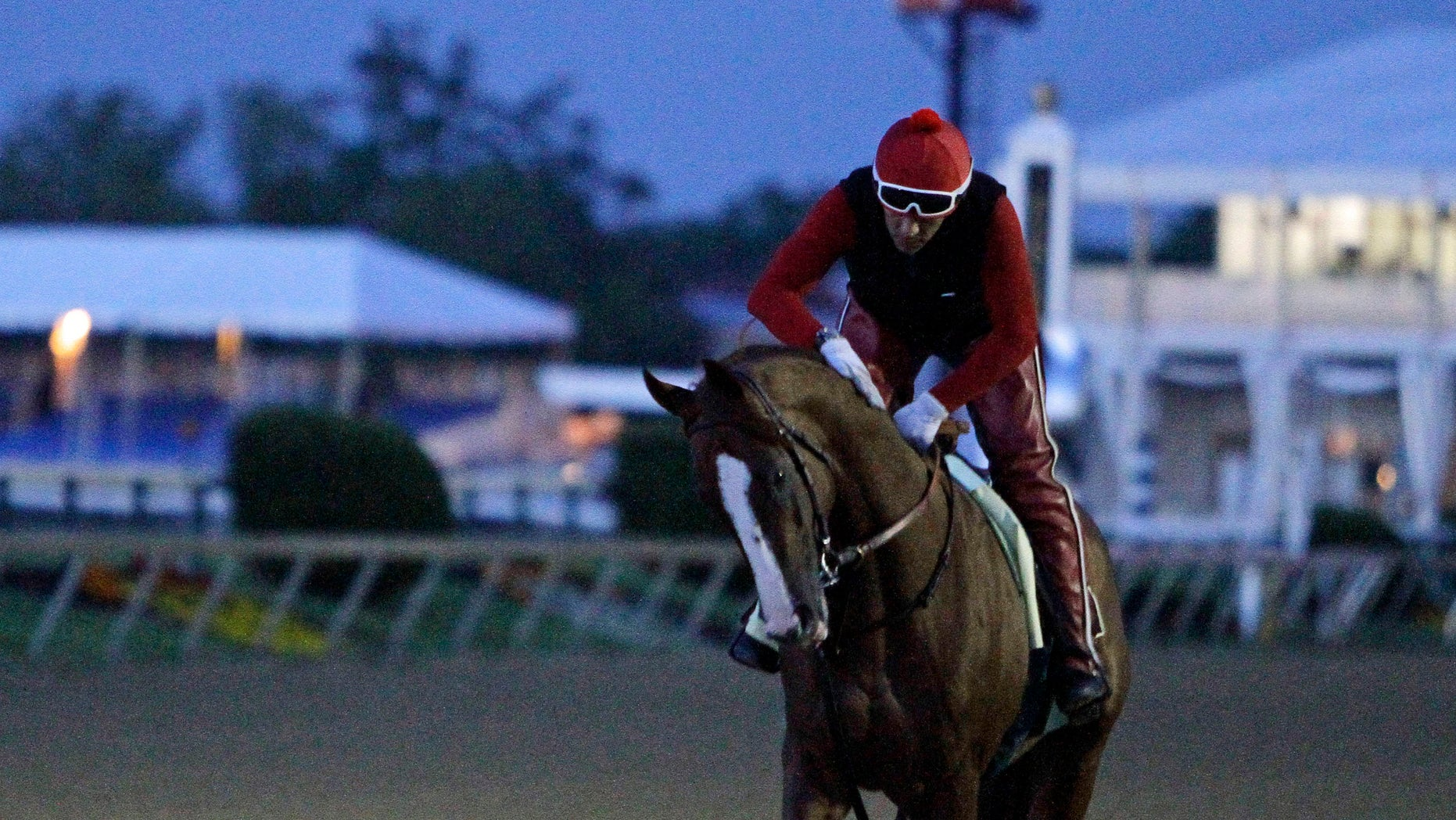 May 17, 2014: Preakness Stakes favorite California Chrome gets a pat on the neck from exercise rider Willie Delgado after a morning gallop at Pimlico Race Course in Baltimore.