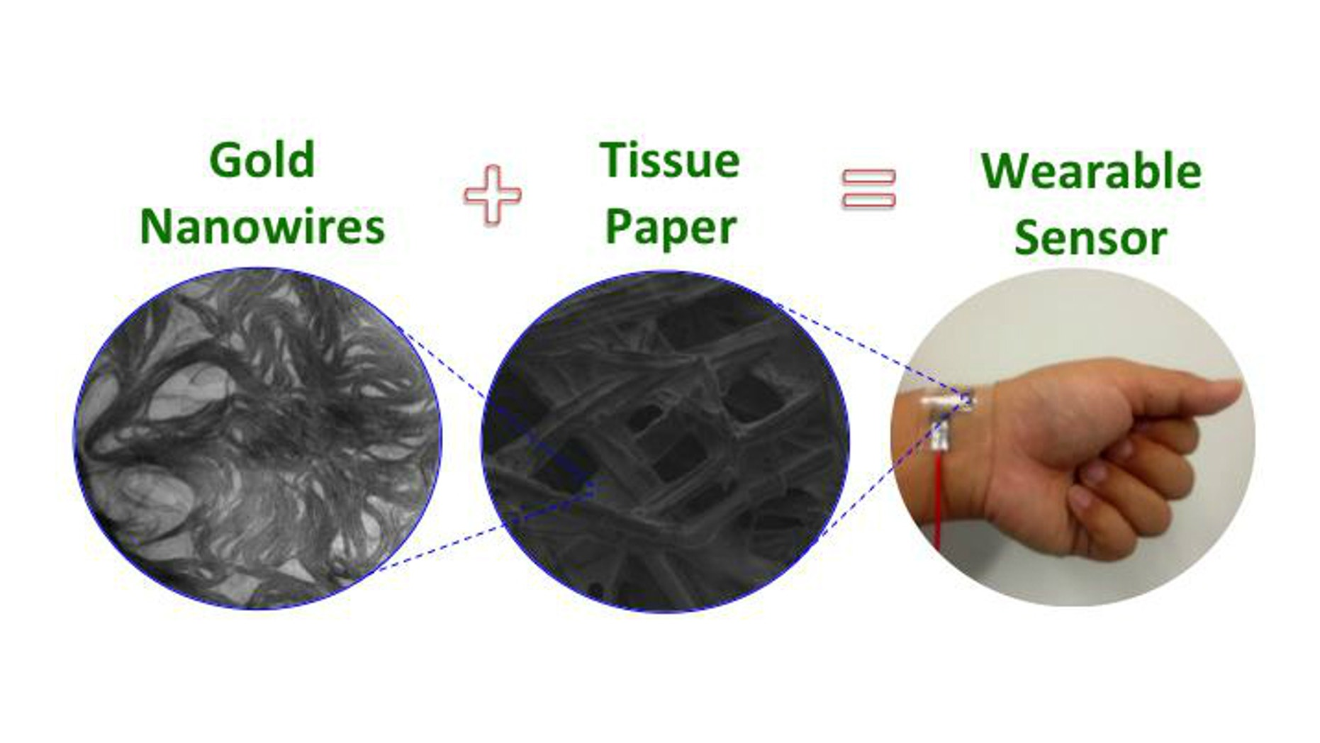 A flexible pressure sensor enables monitoring of tiny forces from artery wrist blood pulses and acoustic waves.