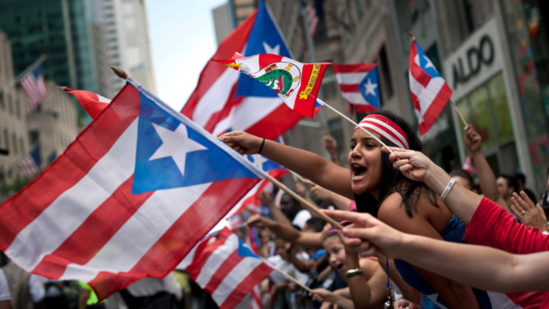 NEW YORK, NY - JUNE 10:  Revelers wave flags along Fifth Avenue during the Puerto Rican Day Parade on June 10, 2012 in New York City. The Puerto Rican Day Parade draws hundreds of thousands and was first celebrated in New York City in 1958. (Photo by Allison Joyce/Getty Images)
