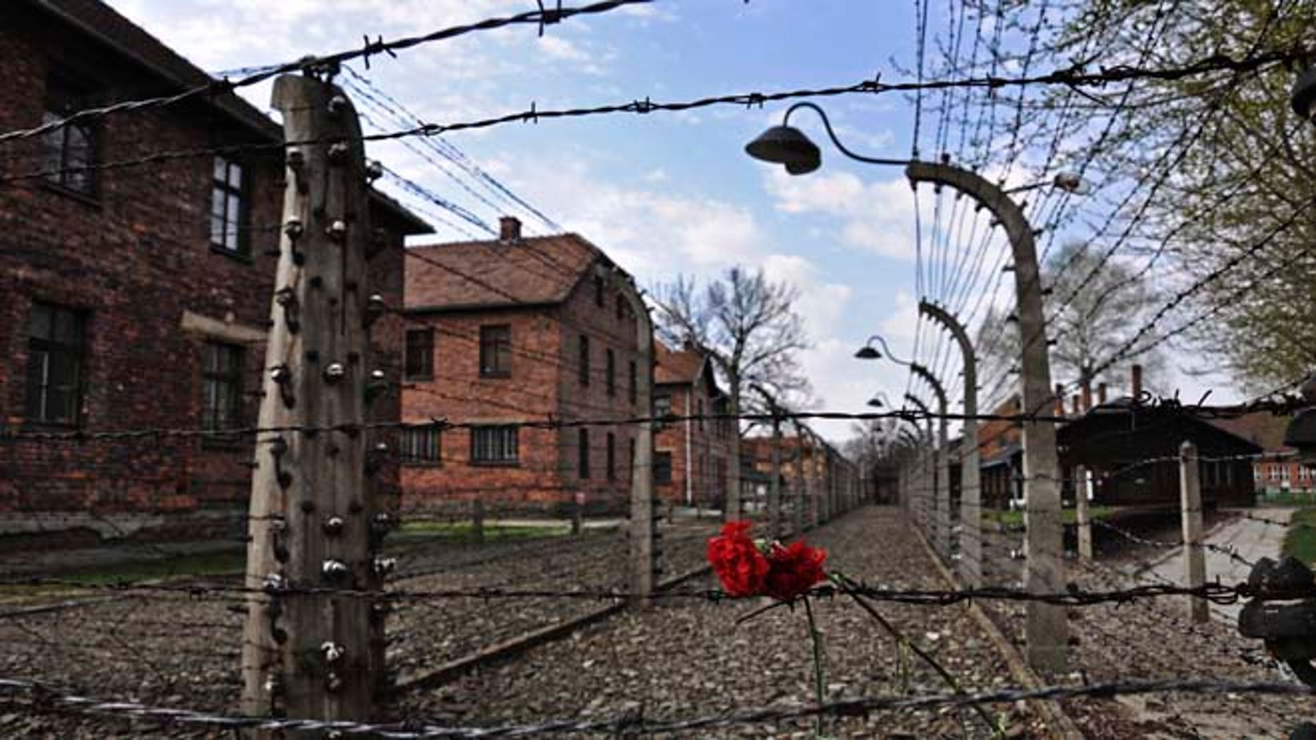April 16, 2015: Carnations are placed on the barbed wire in the former Nazi death camp of Auschwitz.