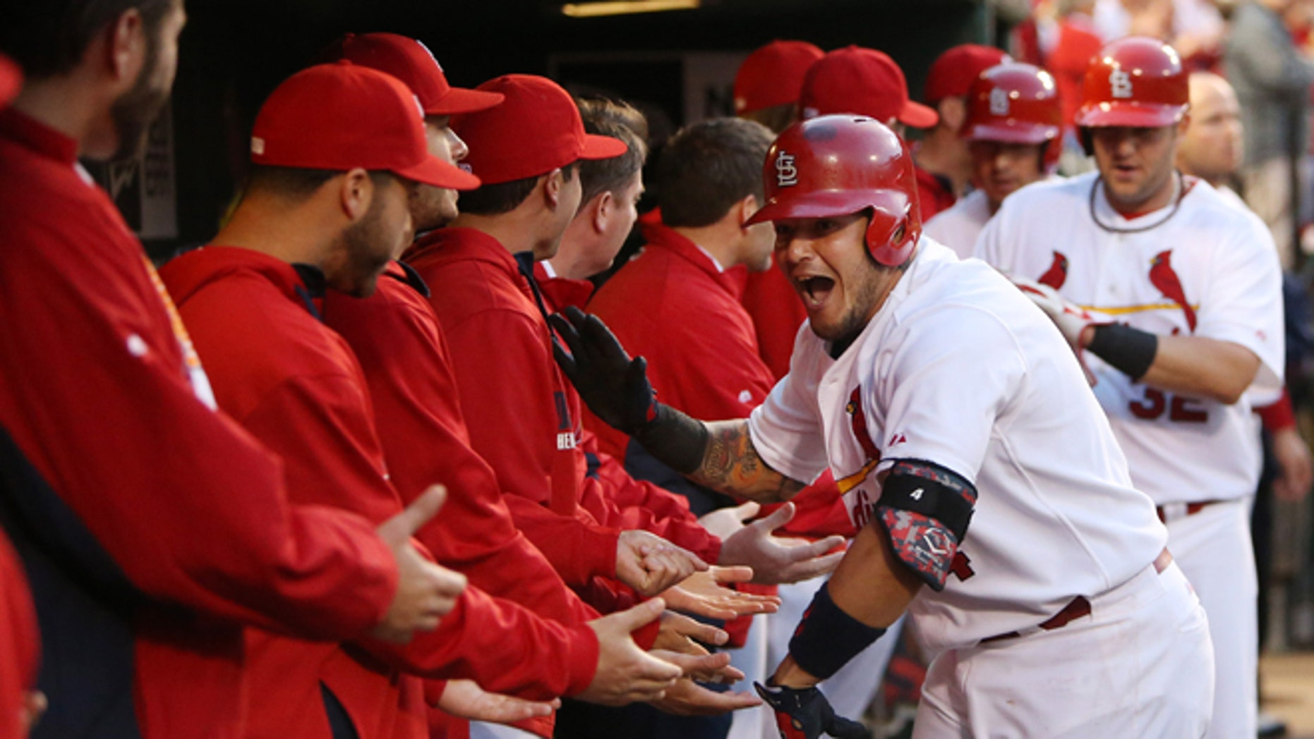 St. Louis Cardinals' Yadier Molina celebrates with teammates in the dugout after hitting a three-run home run against the Milwaukee Brewers in the first inning of a baseball game Tuesday, April 29, 2014, in St. Louis. The Brewers won 5-4 in 11 innings. (AP Photo/St. Louis Post-Dispatch, Chris Lee) EDWARDSVILLE OUT  ALTON OUT