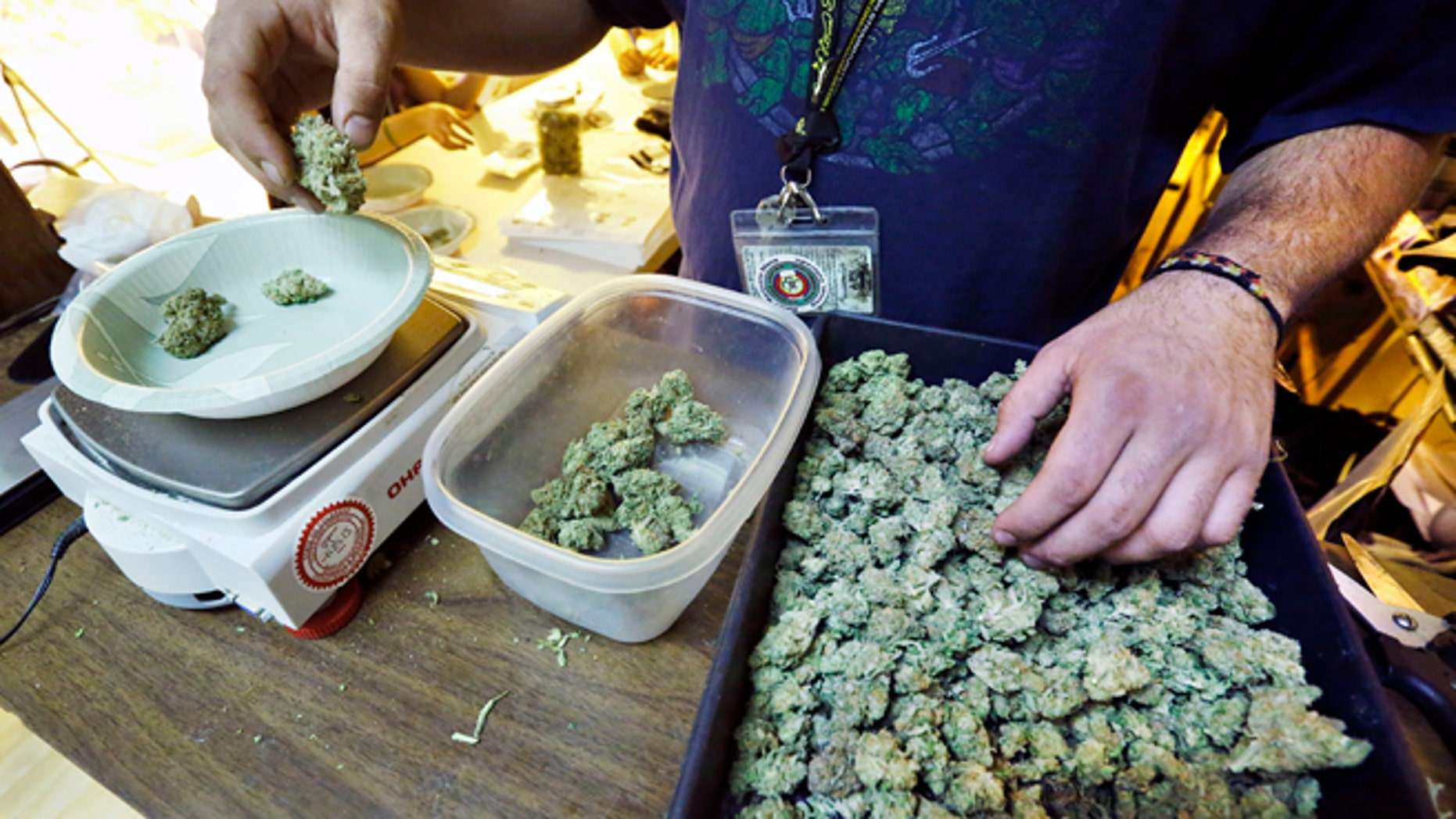 An employee weighs portions of retail marijuana to be packaged and sold at 3D Cannabis Center in Denver.