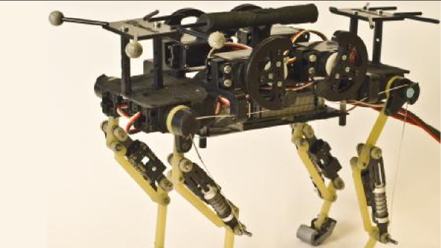 This is Cheetah-cub, a robust quadruped robot.