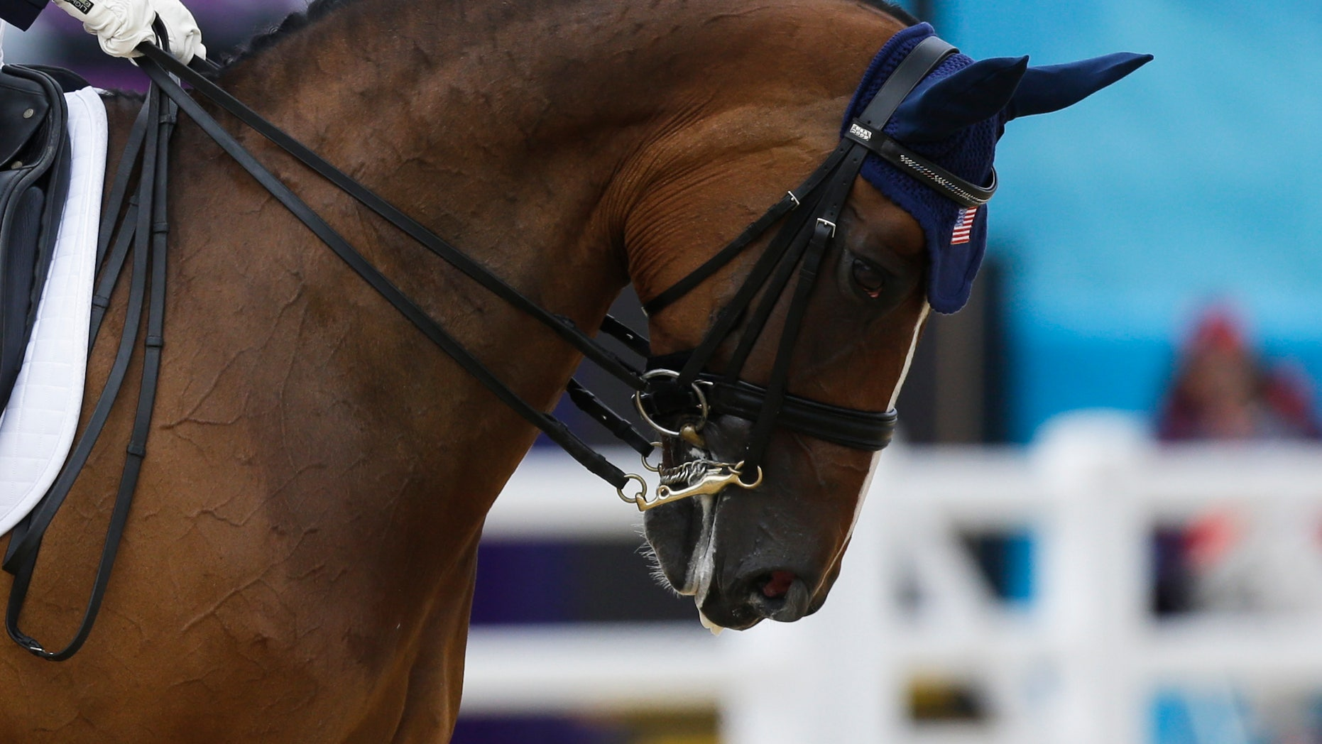 Aug. 2, 2012: The horse Rafalca is ridden by Jan Ebeling from United States during the equestrian dressage competition, at the 2012 Summer Olympics, in London.